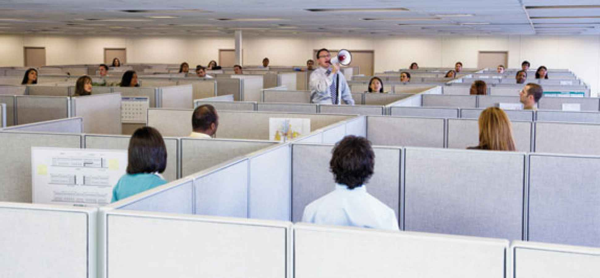 people in cubicles your office design is killing teamwork