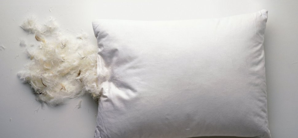MyPillow Takes Its Lumps from Better Business Bureau