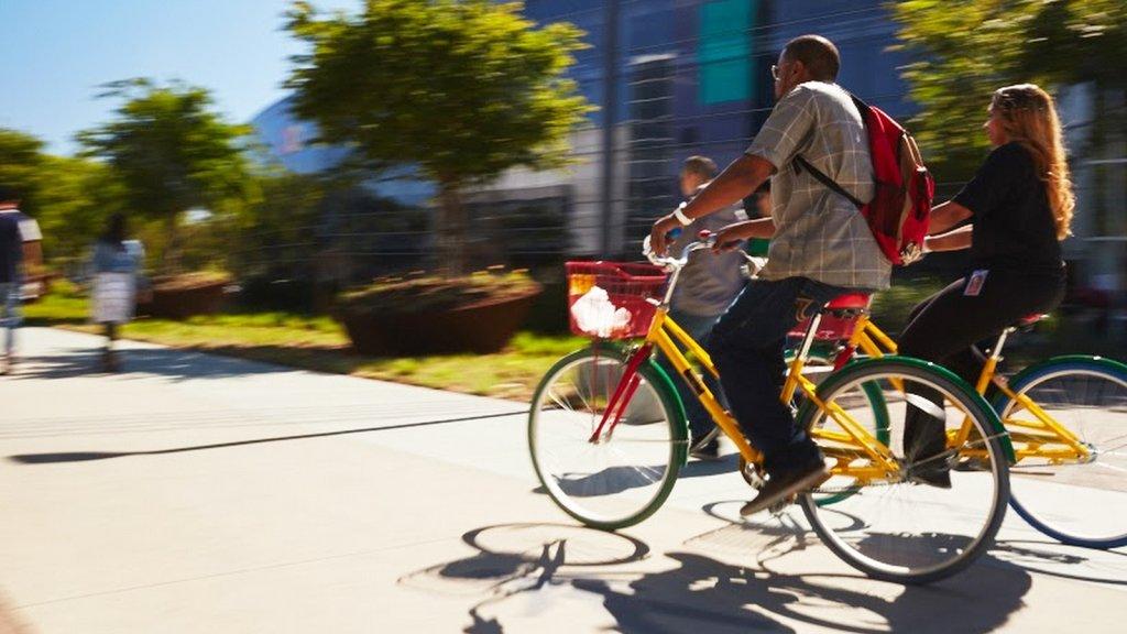 Bikes on Google's campus.