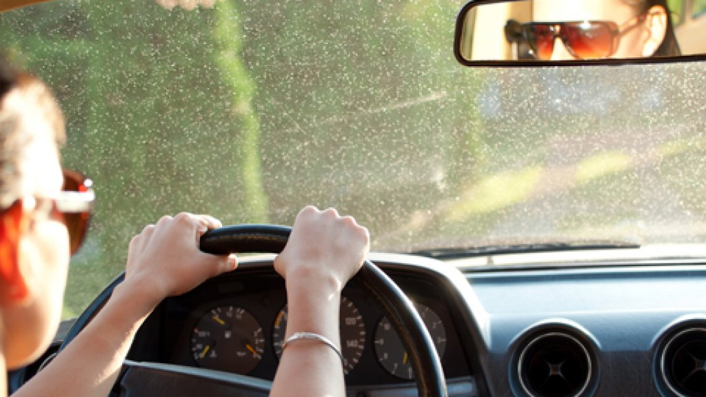 Where's Your Blind Spot?