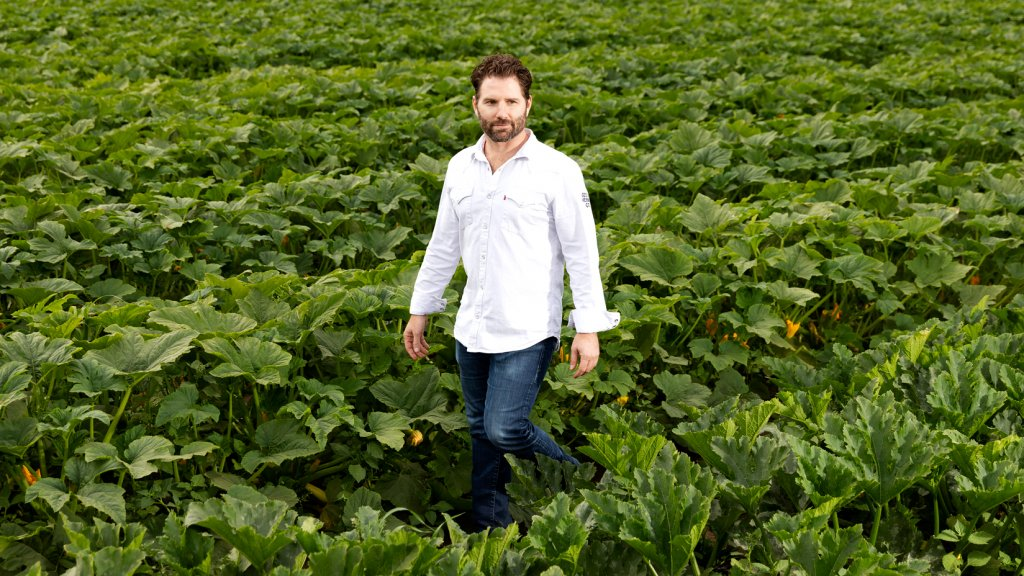Mason Arnold, founder of Cece's Veggie Co., among zucchini plants that are ready to be made into noodles.