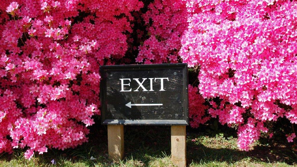 5 Critical Factors That Affect Business Exit Strategy Timelines