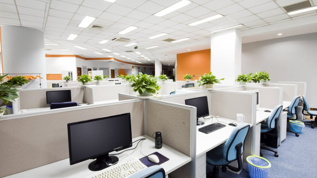 Biophilia Increases Employee Satisfaction and Company Bottom Lines