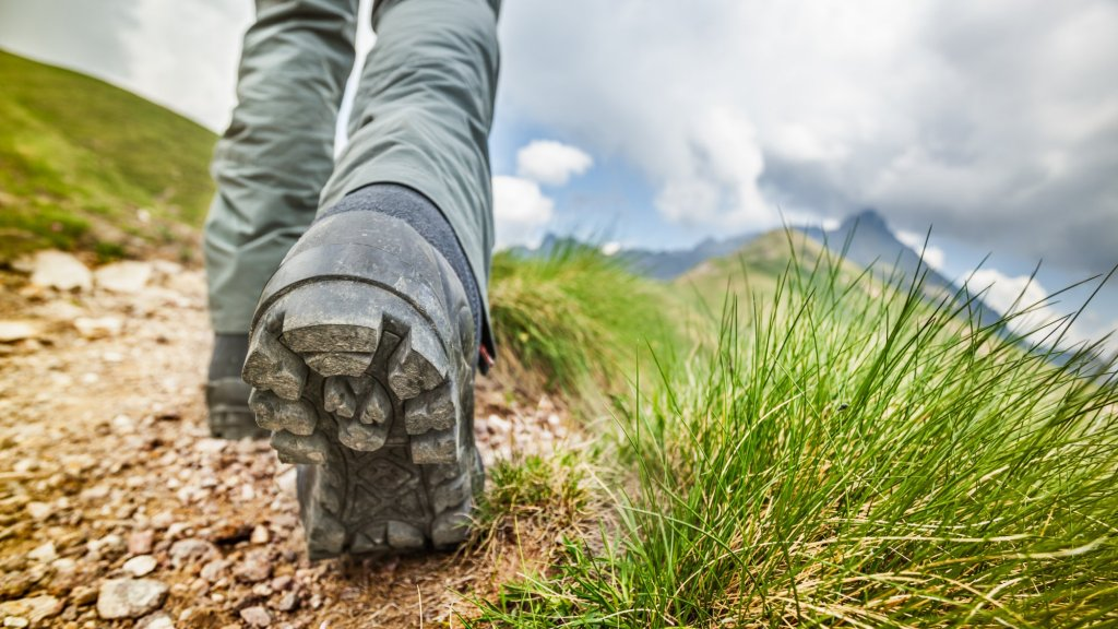 Brand Trailblazing: 5 Steps to an Authentic, Stand-out Brand