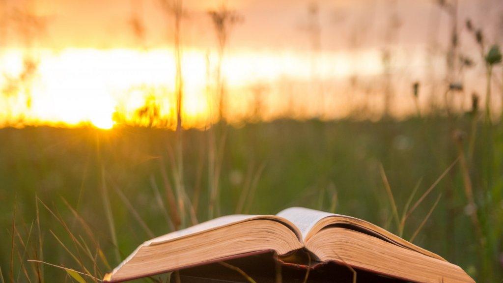 5 Unique Books That Successful Entrepreneurs Love