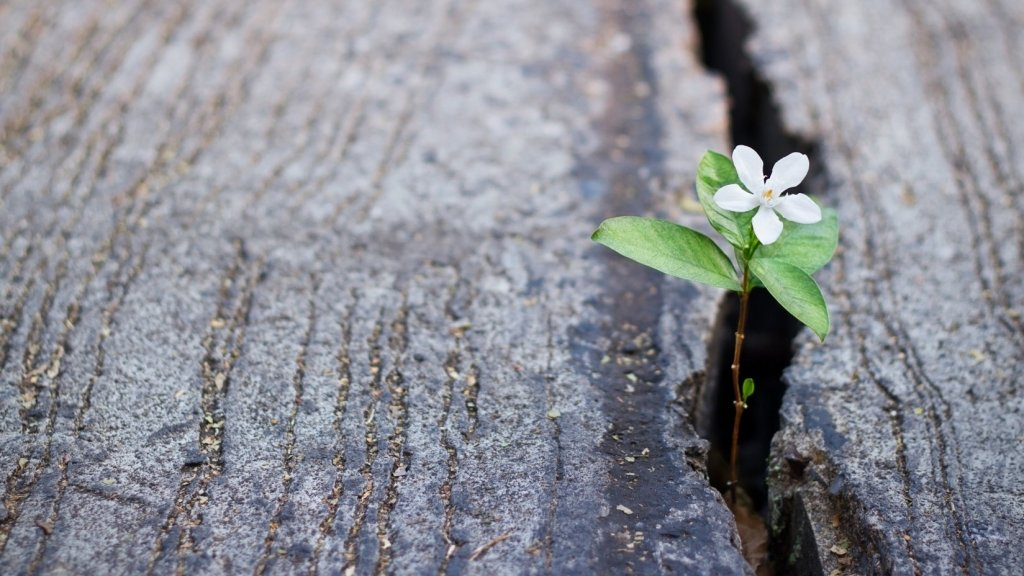 Want to Grow Your Business? Stop Focusing on Retaining Customers and Do These 3 Things Instead