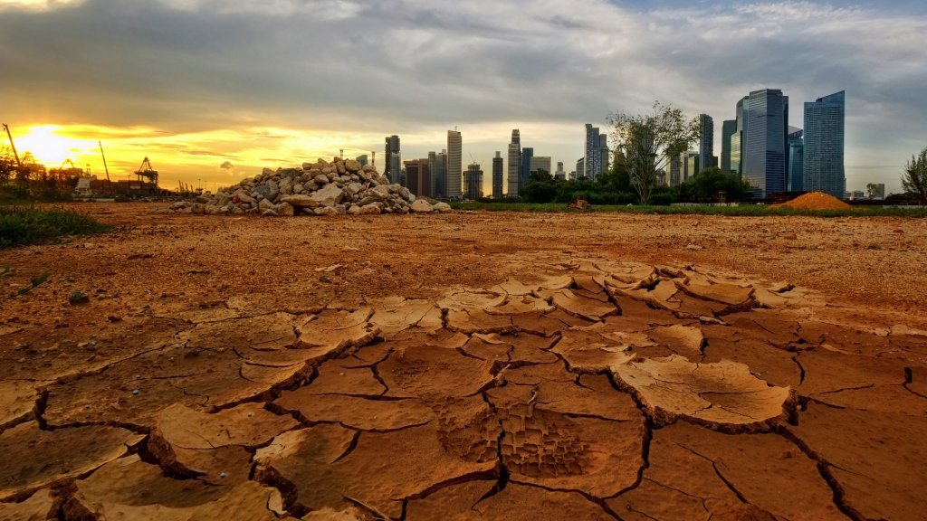 Why the Environment Needs Leadership