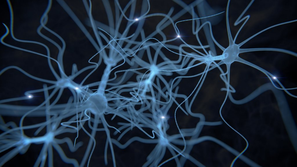 How to Leverage the Neuroscience of Leadership for Success
