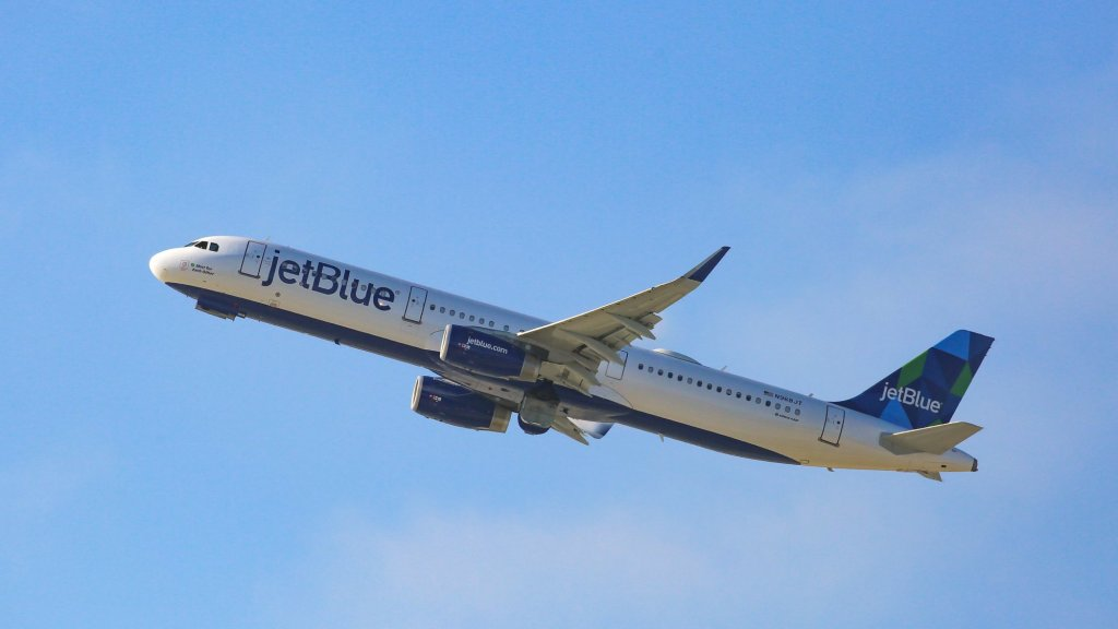 A JetBlue Flight Attendant Put an Oxygen Mask on a Struggling Dog (Now Why Didn't Other Airlines Think of That?)