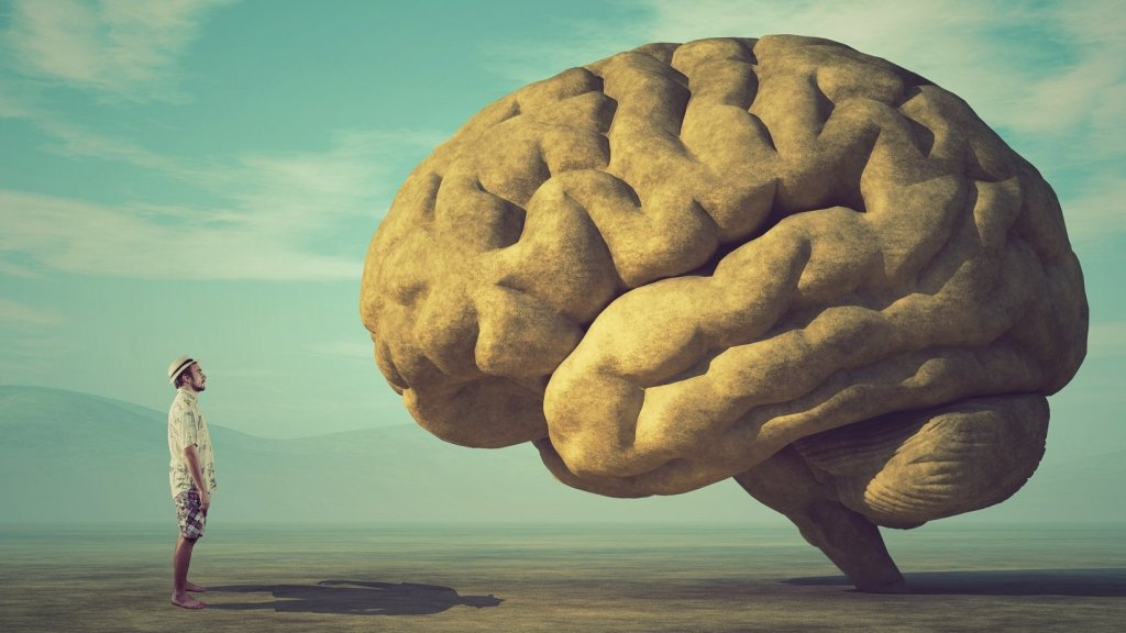 Here's What Happens to Your Brain When You Get Positive Feedback