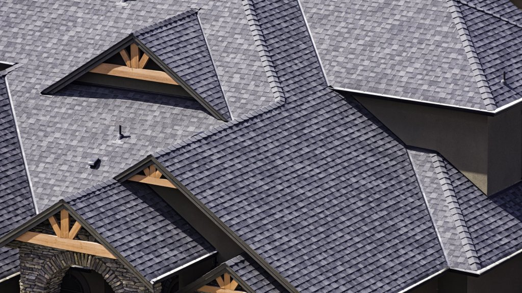 Why Soybeans Are the Next Major Innovation In the Roofing Industry
