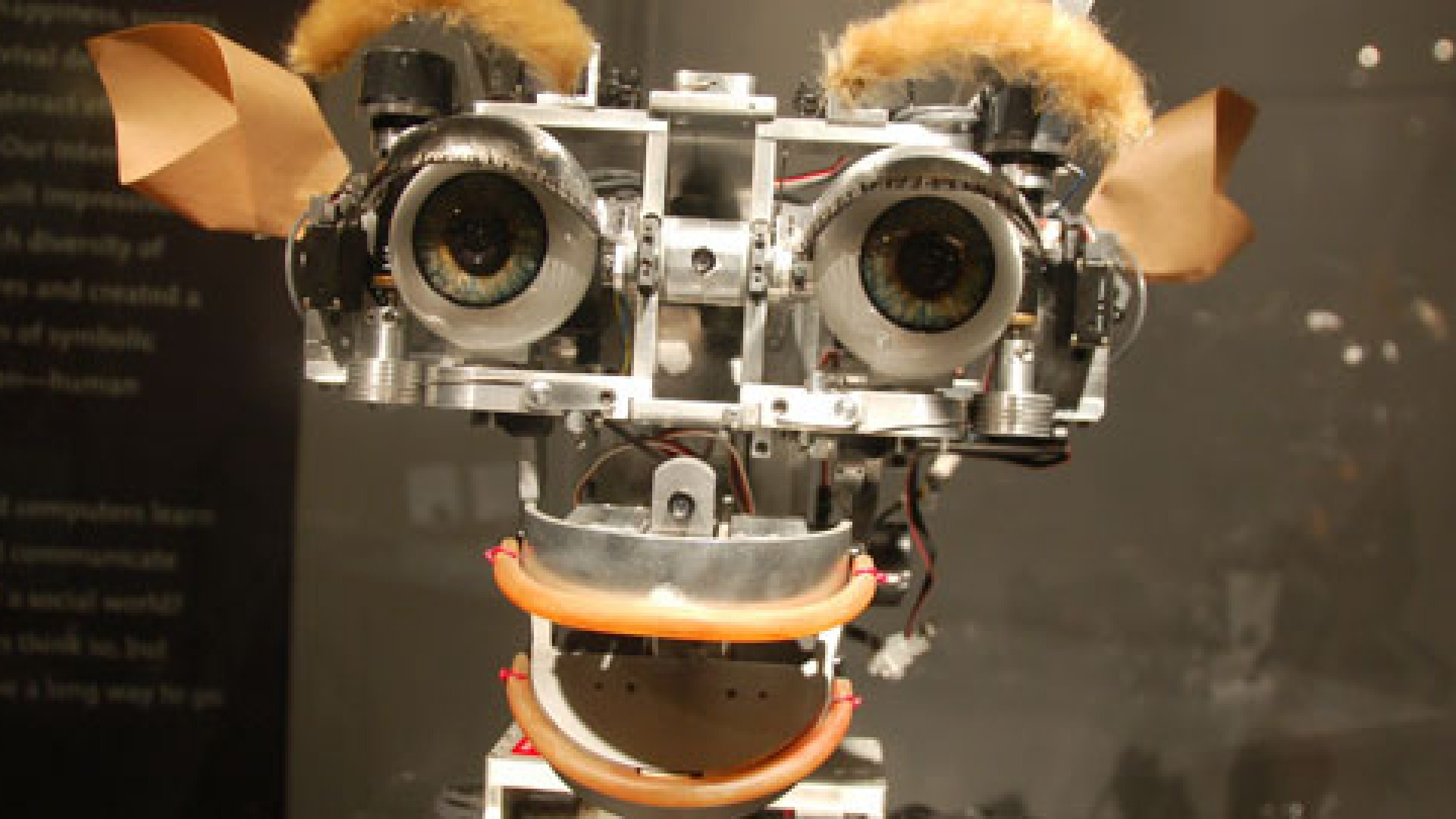 Kismet the robot at the MIT Museum.