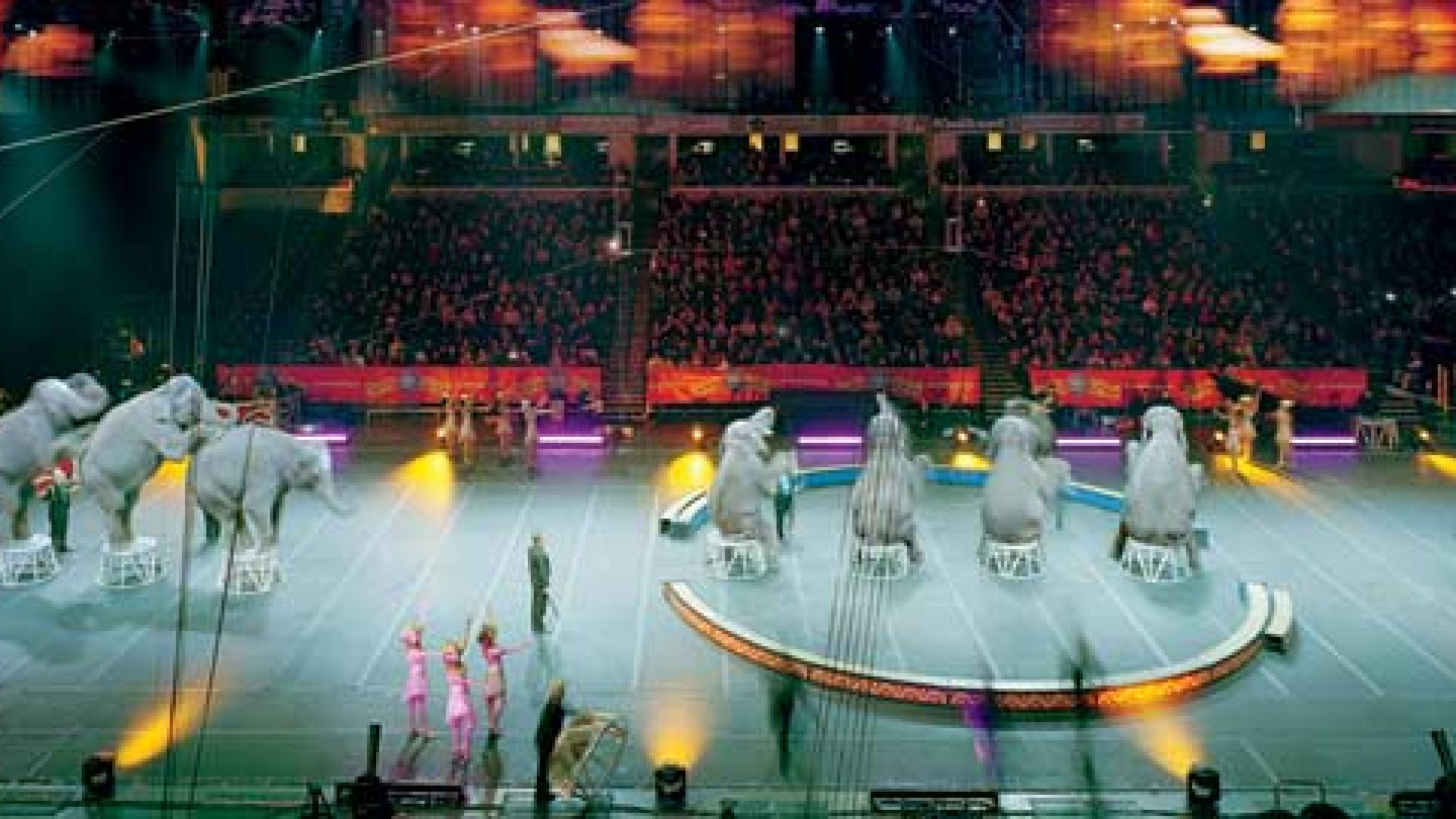 The Business of the Ringling Bros. and Barnum & Bailey Circus
