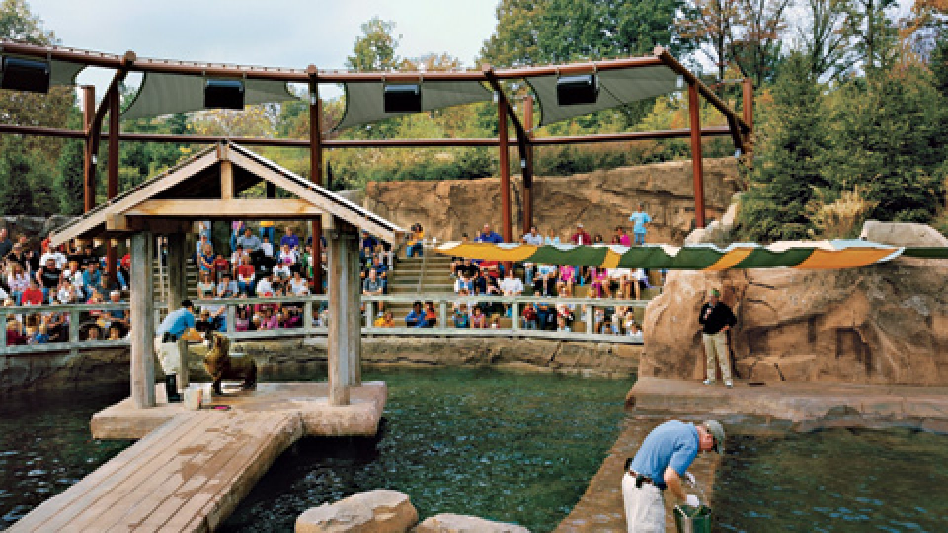The Business of the Sea Lion Exhibit at the Louisville Zoo