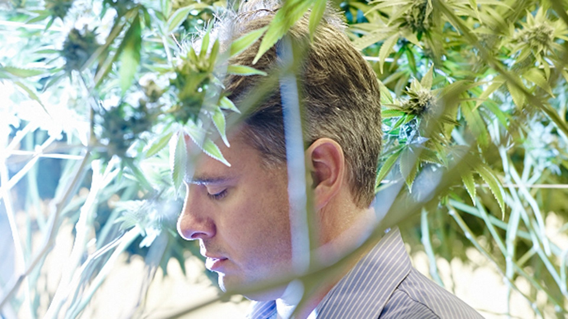 How This Non-Stoner Accidentally Found himself Dominating the Pot Industry