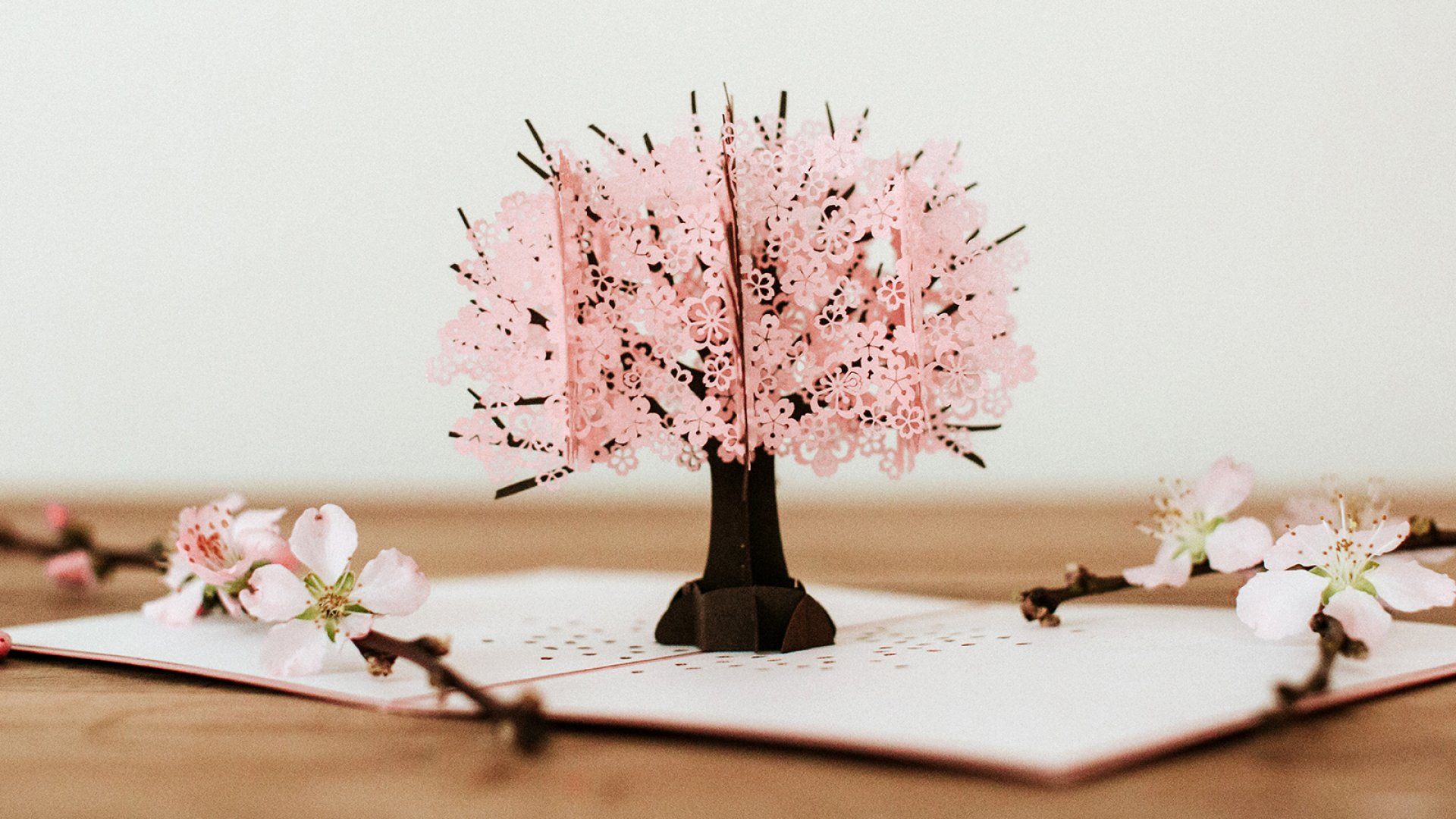 Cherry Blossom Lovepop 3-D greeting card.