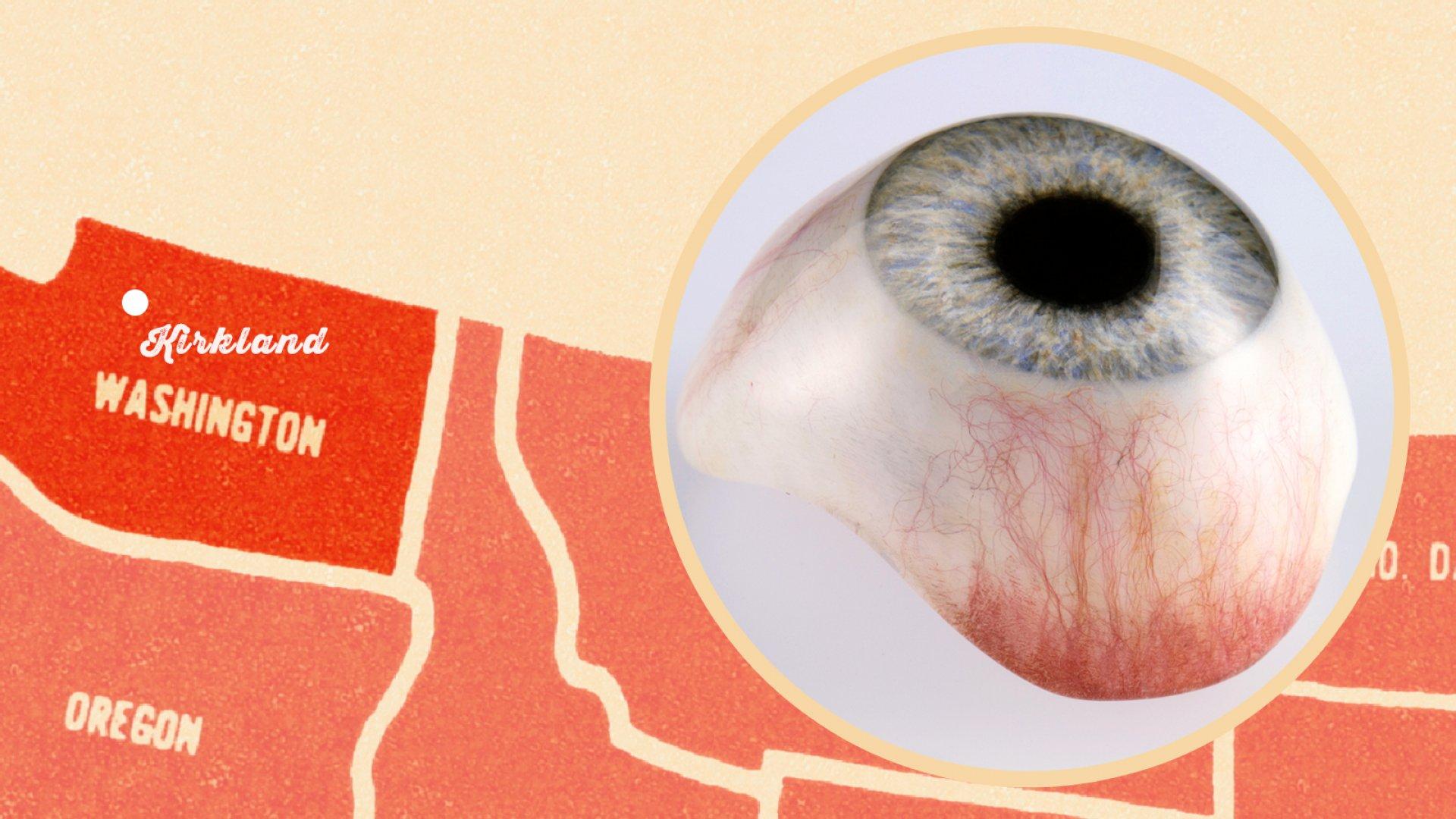 This Company Makes Fake Human Eyeballs an Art Form