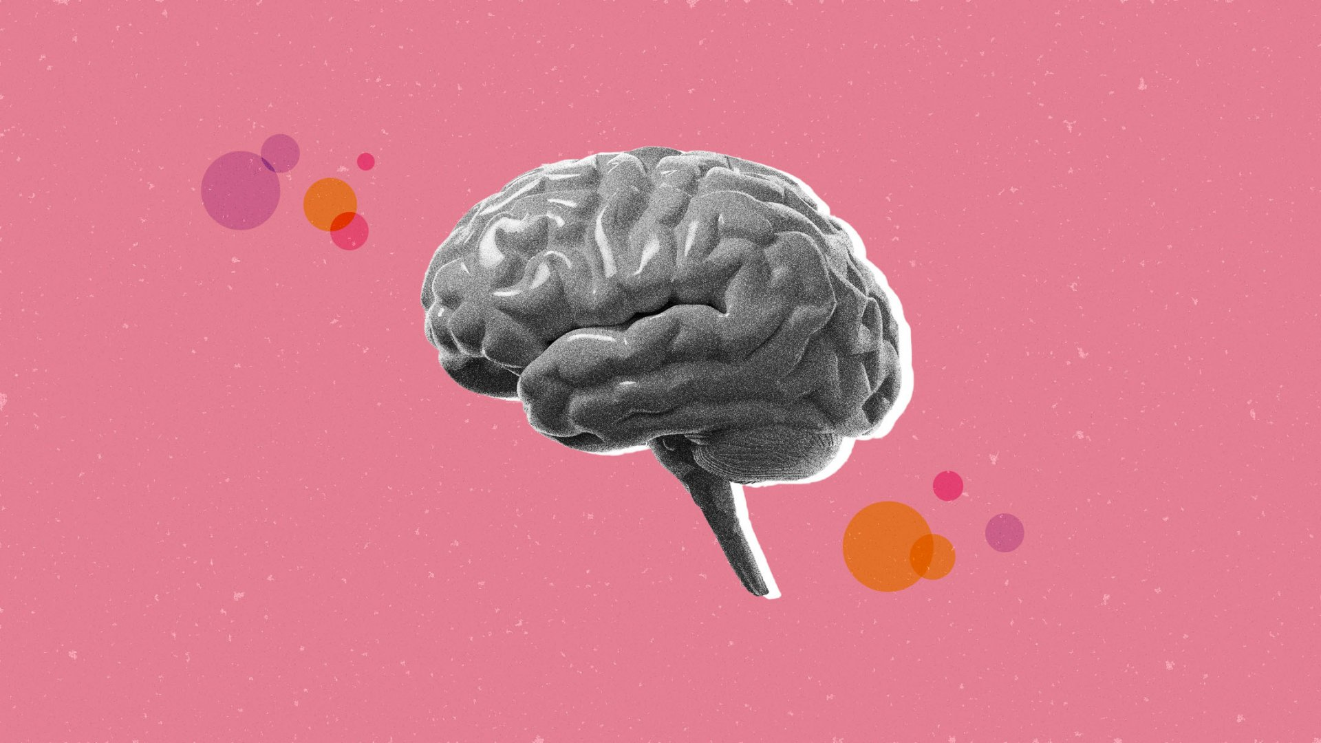 Being Kind to Others Improves Brain Function, Stanford Study Shows