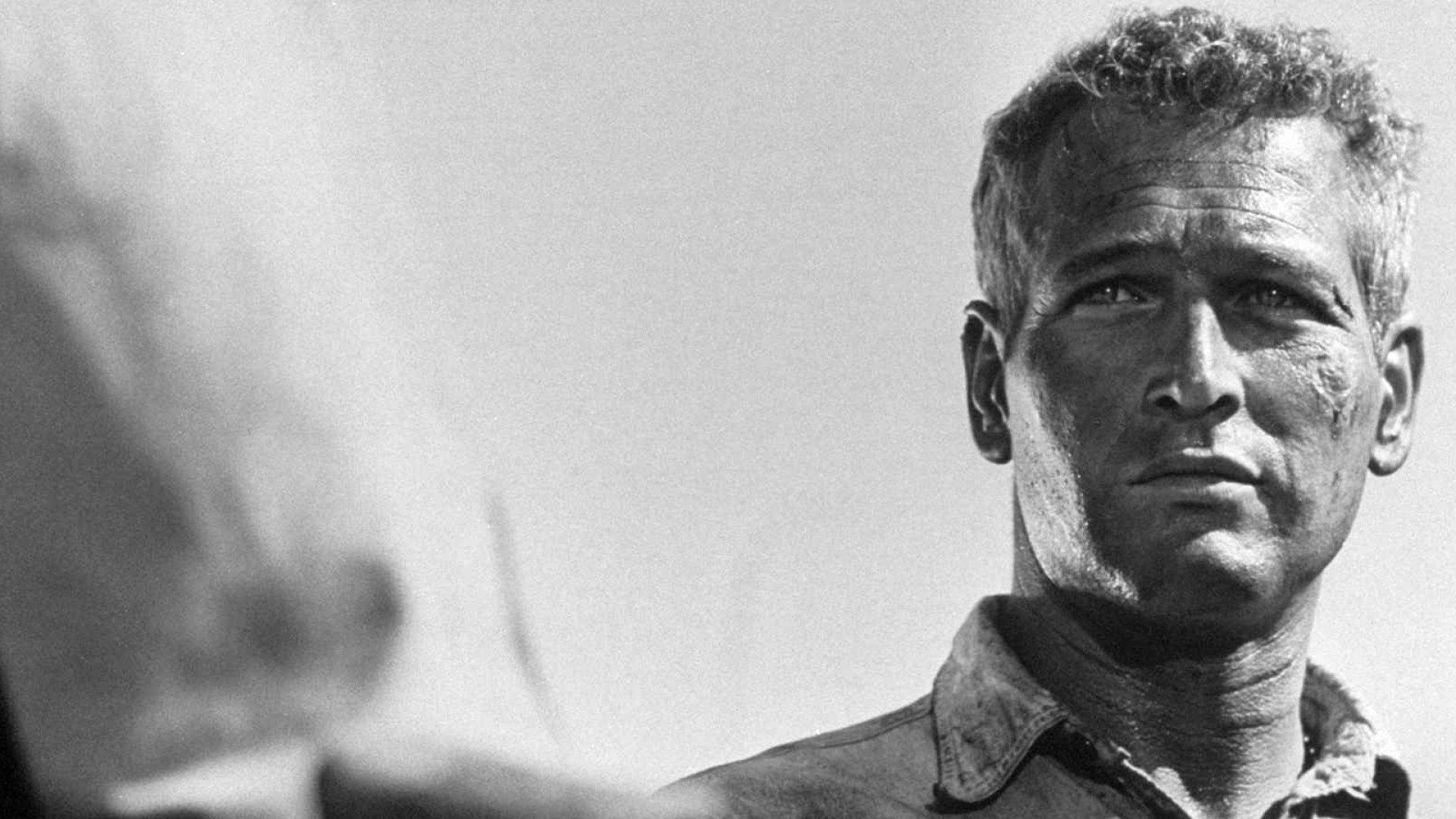 Paul Newman as Cool Hand Luke.