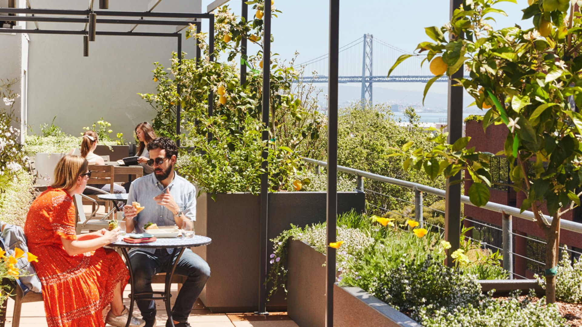 A part of Grove Collaborative's outdoor workspace in San Francisco.