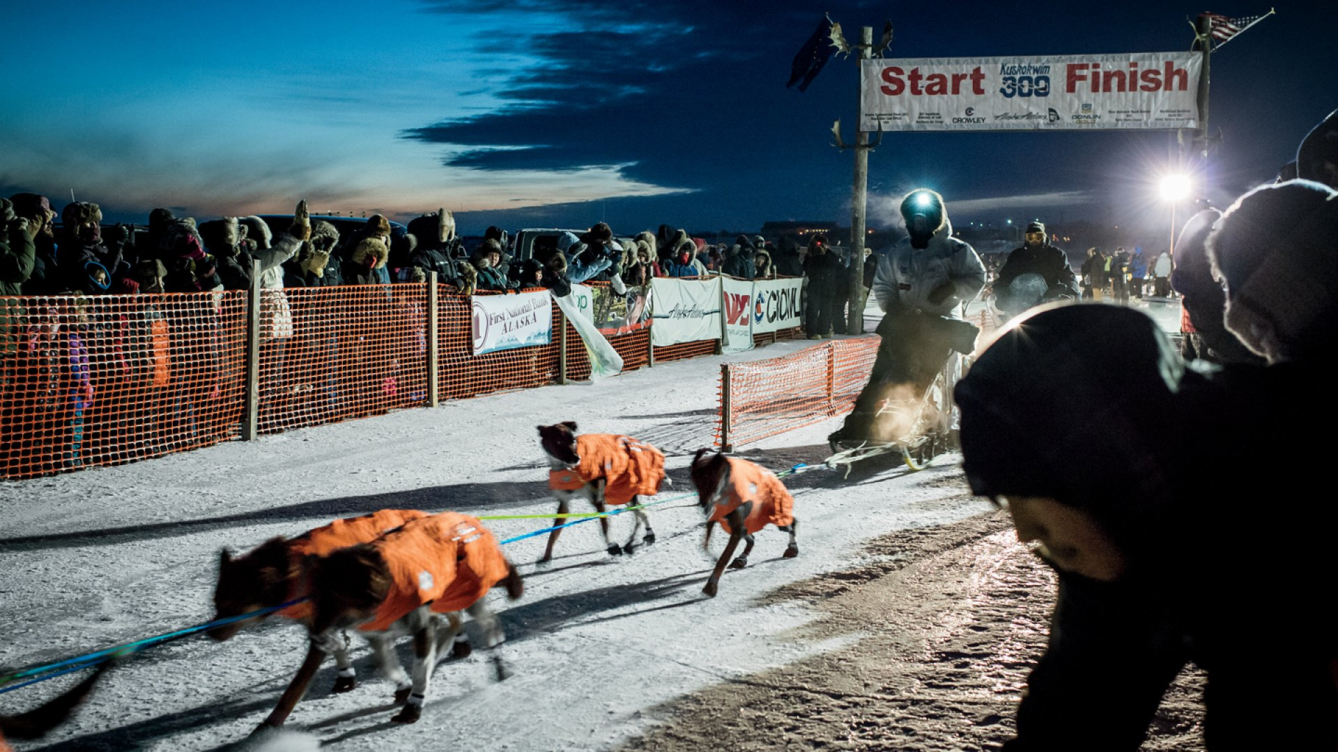 Entrepreneurs Who Keep the Iditarod Mushing