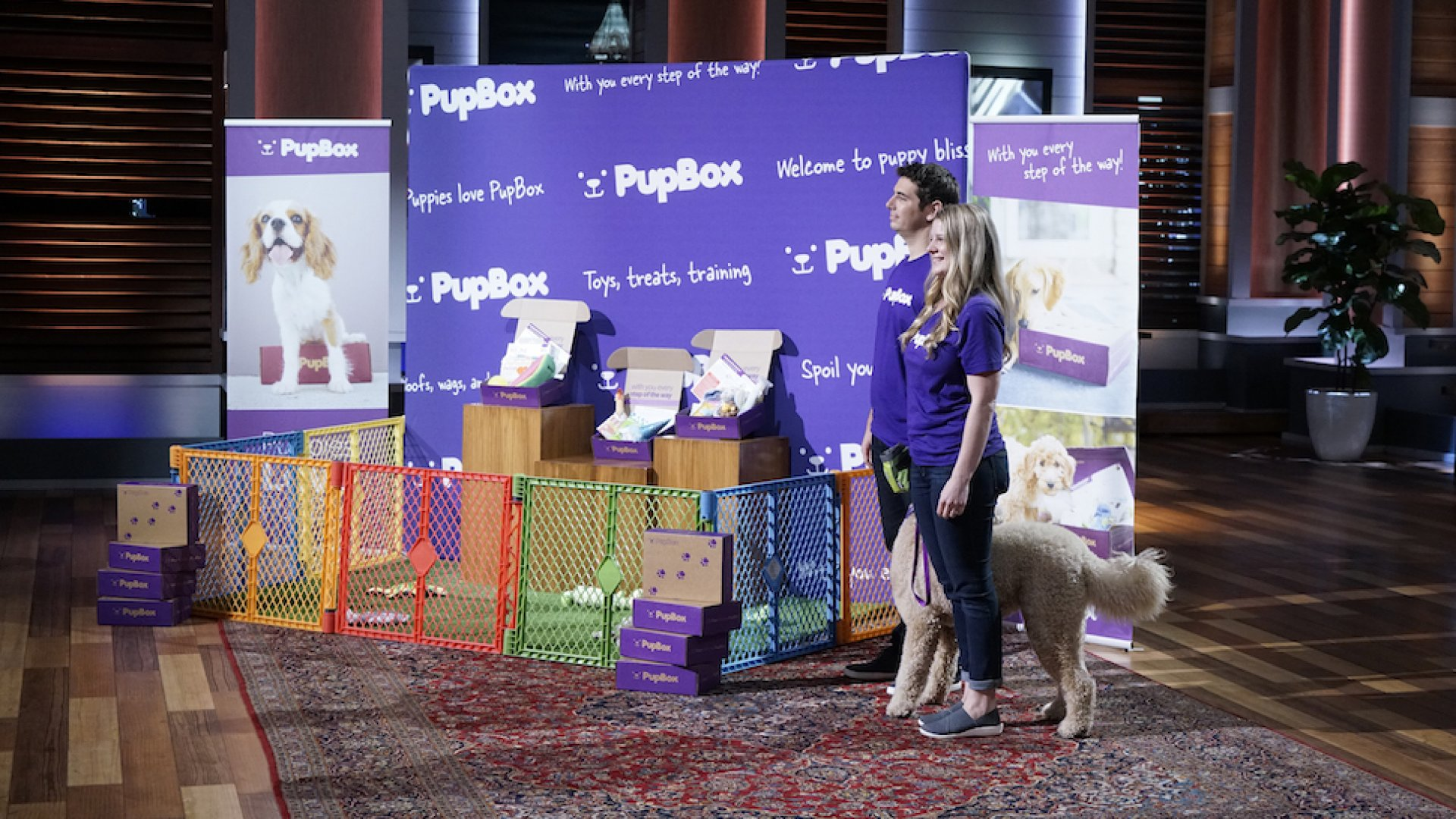 "SHARK TANK -- ""Episode 810"" -- An entrepreneurial couple from San Francisco ply the Sharks with adorable puppies in hopes of getting them to invest in their subscription service for puppy products."
