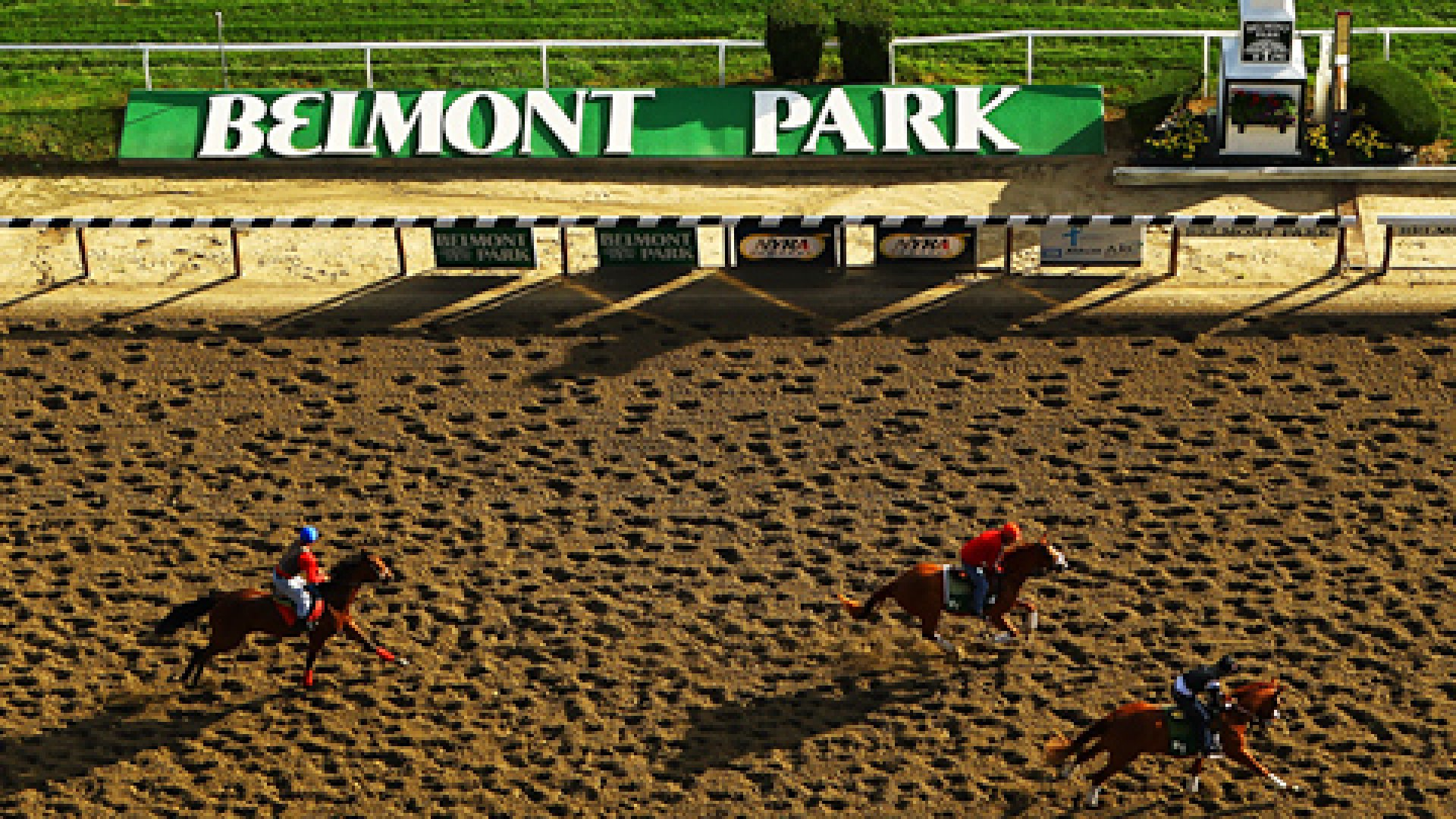 Horses and exercise riders train during a morning workout at Belmont Park on June 5, 2012 in Elmont, New York.