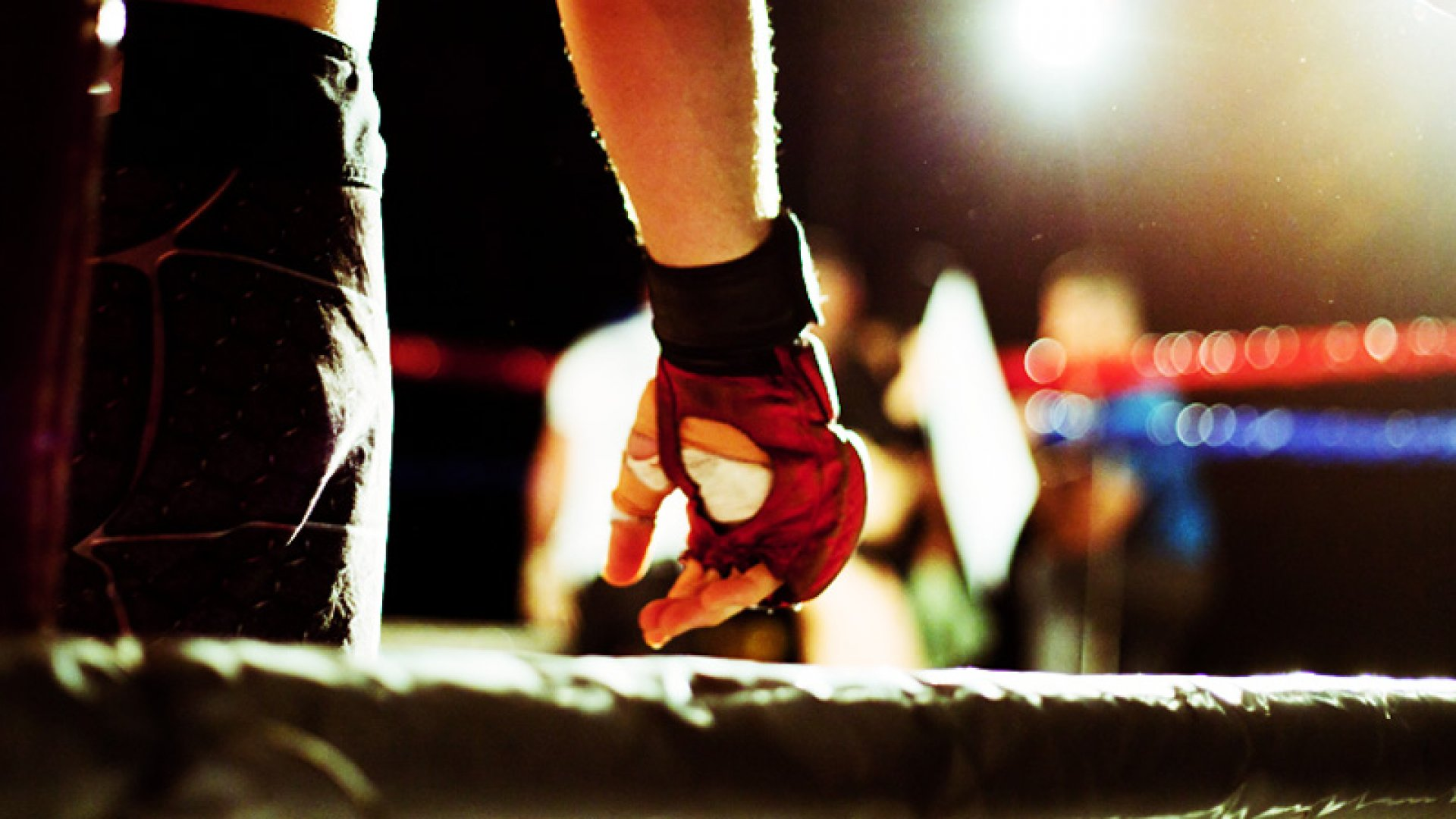 Annihilate Your Competition: 6 Rules of Battle