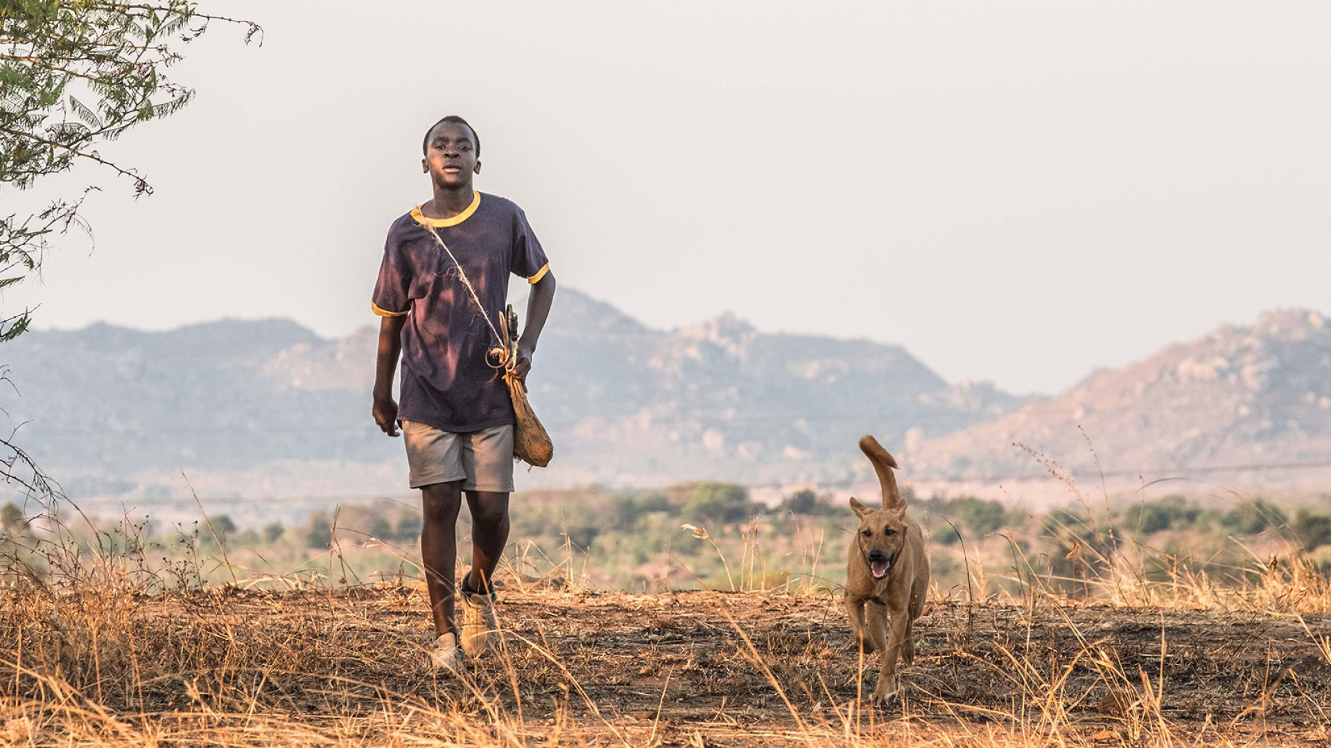 "A still from ""The Boy Who Harnessed the Wind."""