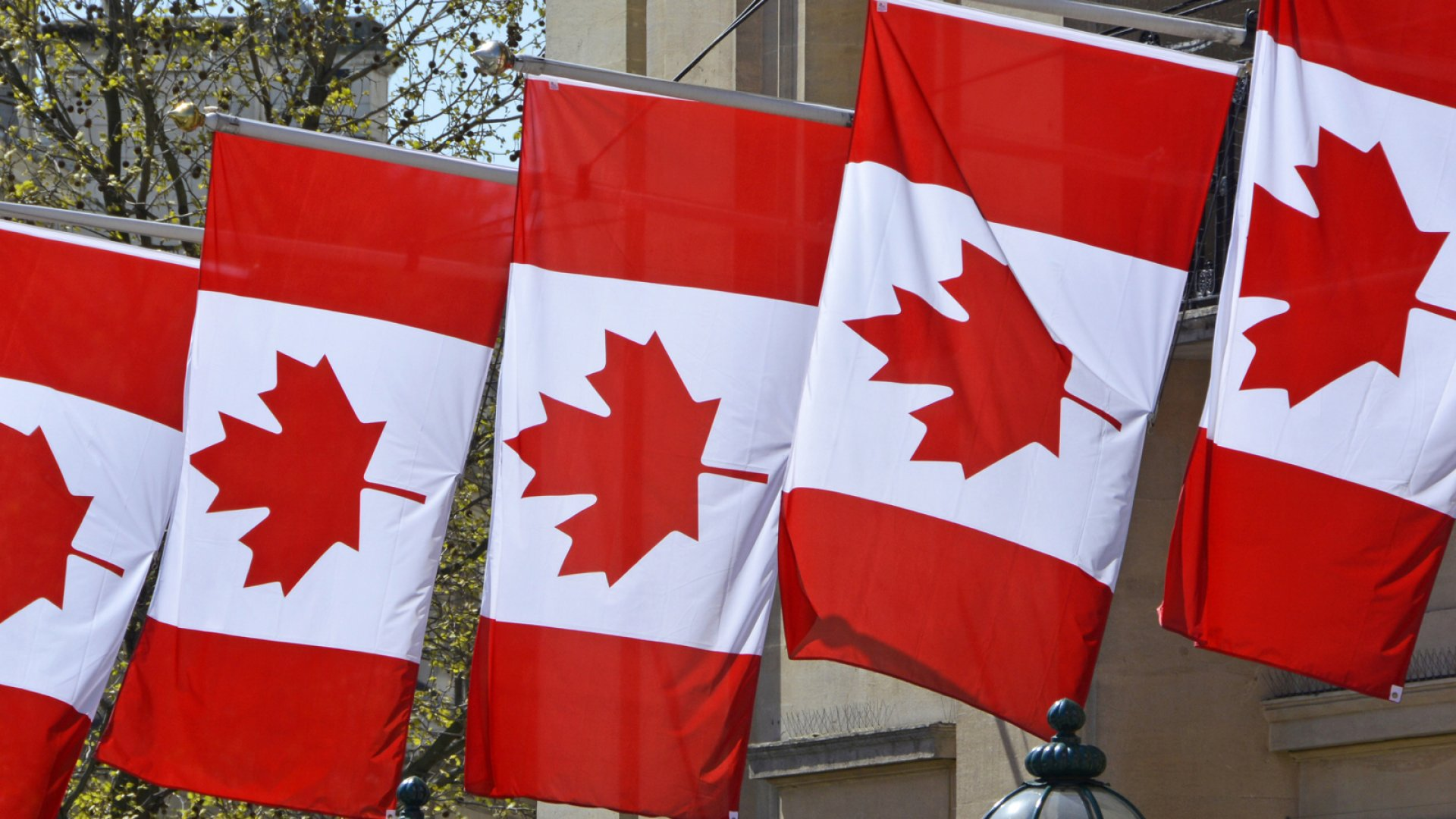 Is Canada Coming After Your Business?