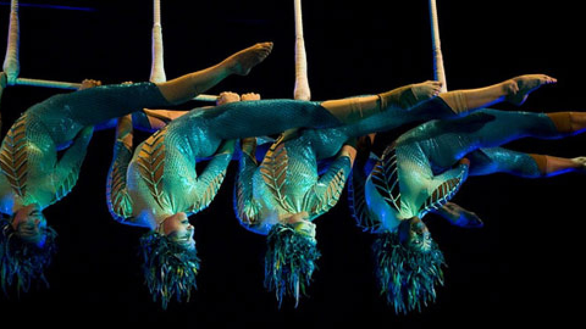 Where does Cirque du Soleil's constant flow of creativity come from? It's thanks, in large part, to a companywide policy that asks employees to look for inspiration everywhere.