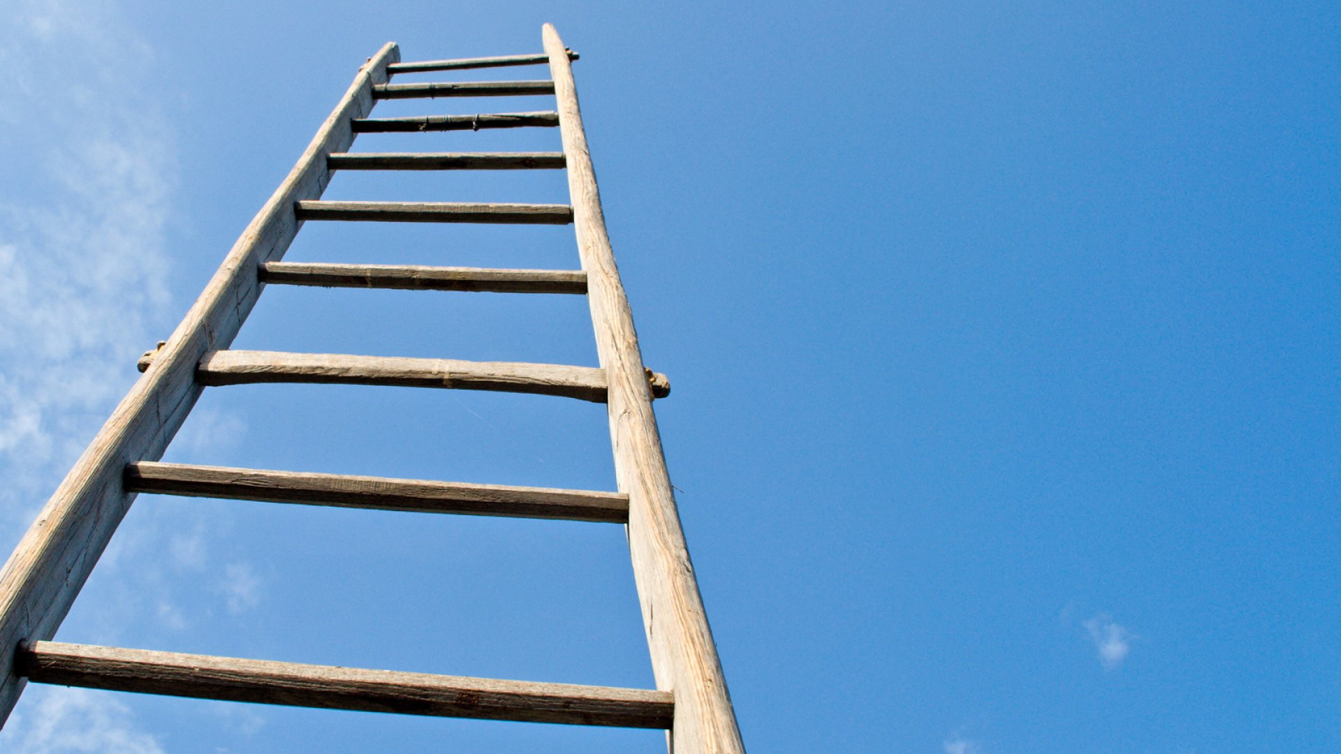 8 Tips on Climbing the Company Ladder
