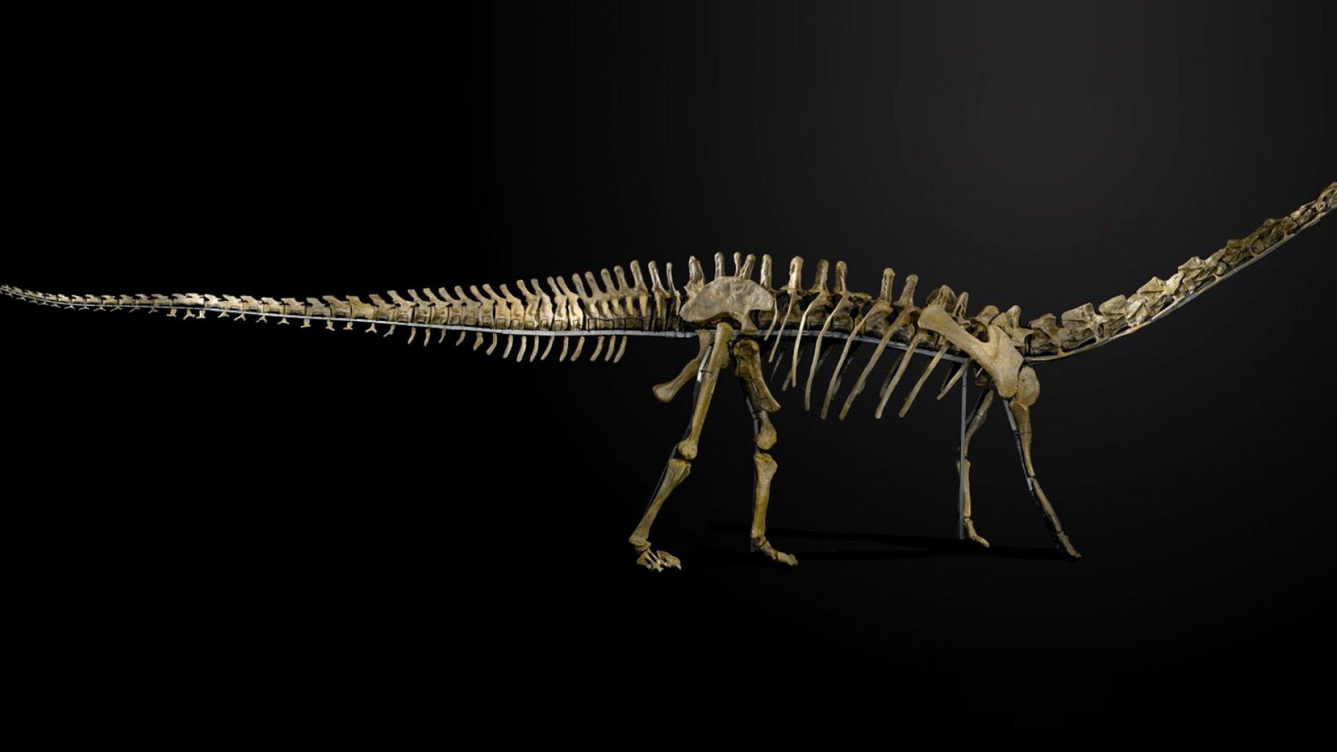 Why Your Resume Is Extinct