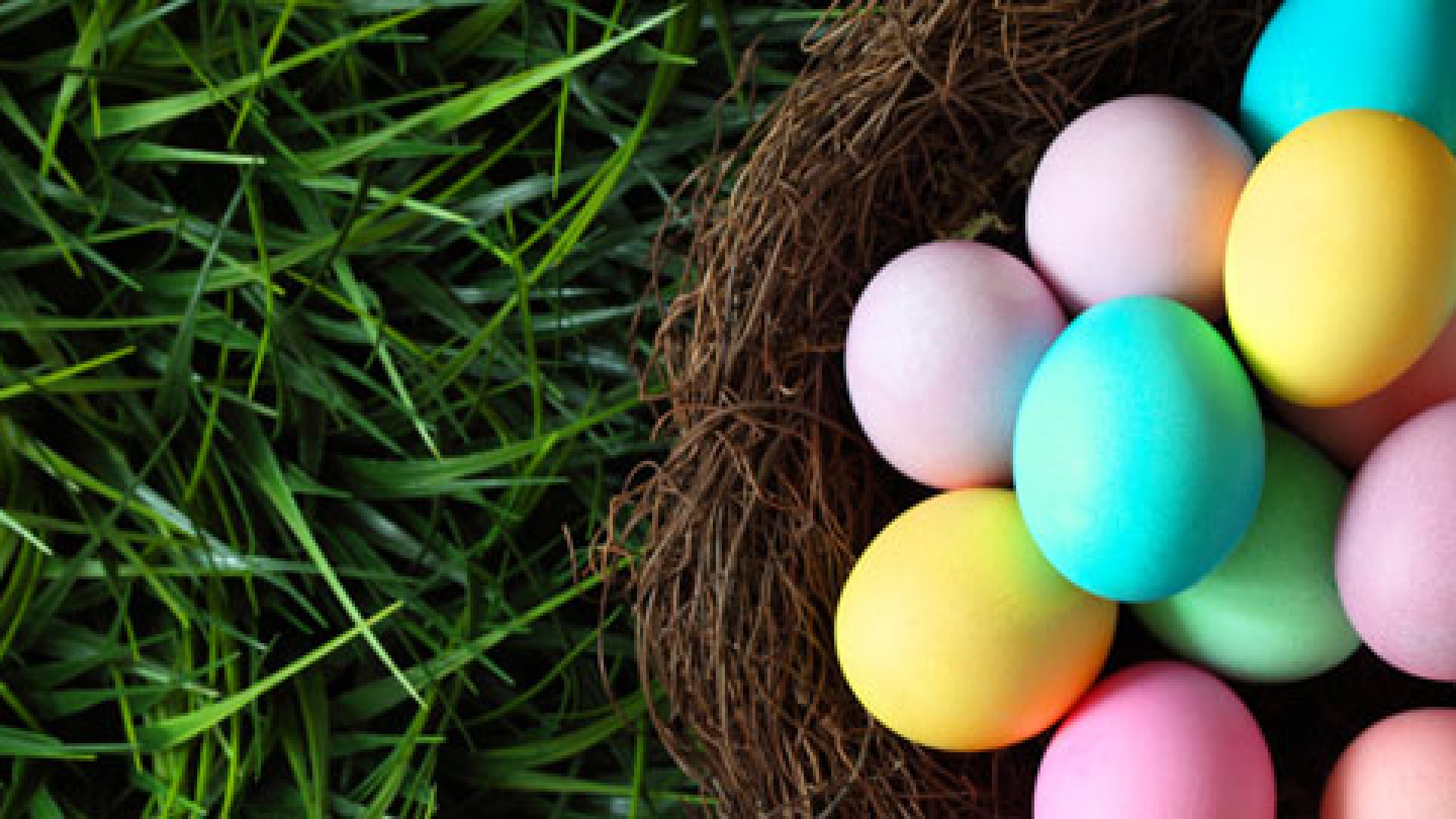 Diversify the Eggs in Your Marketing Basket