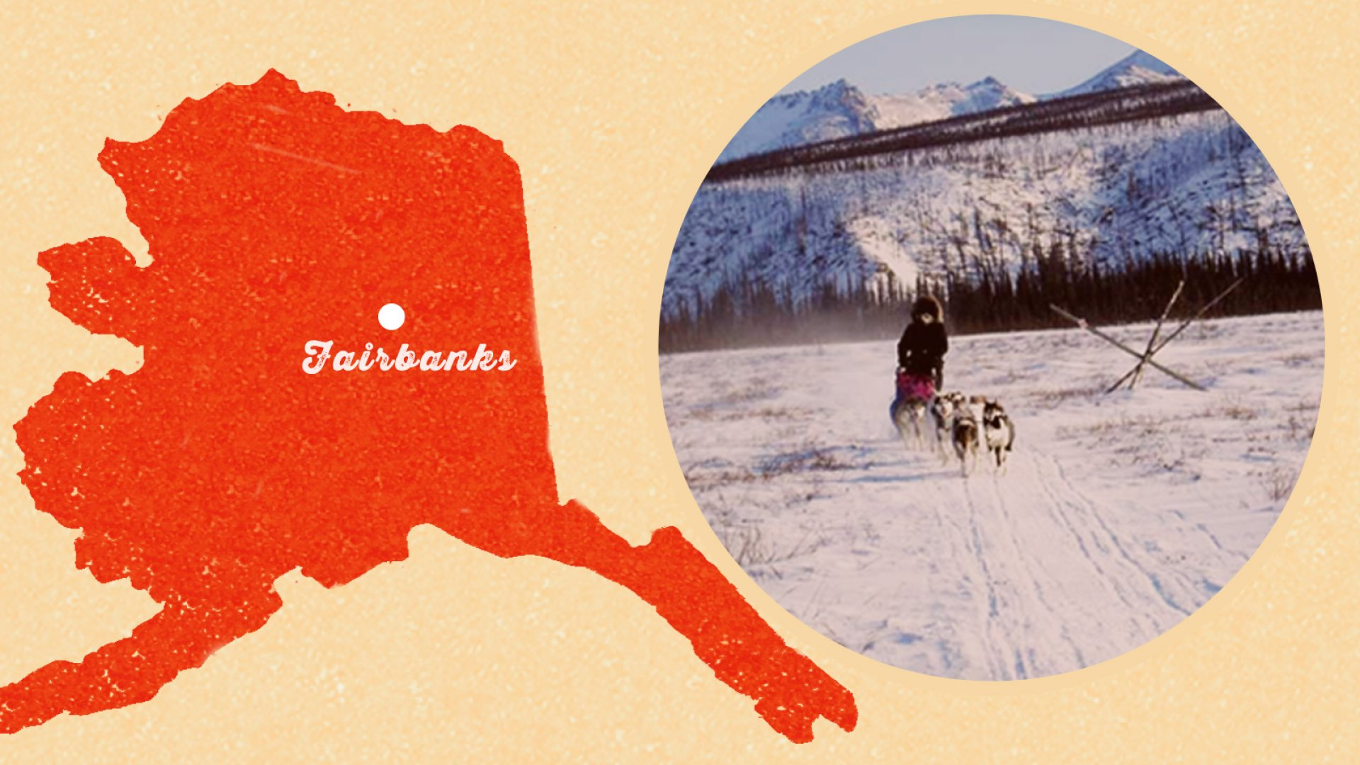 This Tiny Alaskan Company Is the General Motors of Dogsleds