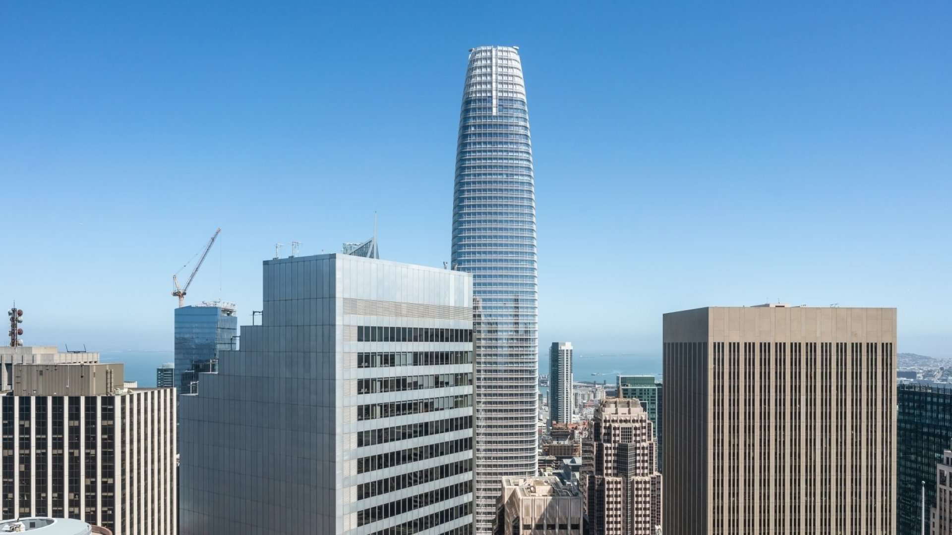 Salesforce Tower in San Francisco.