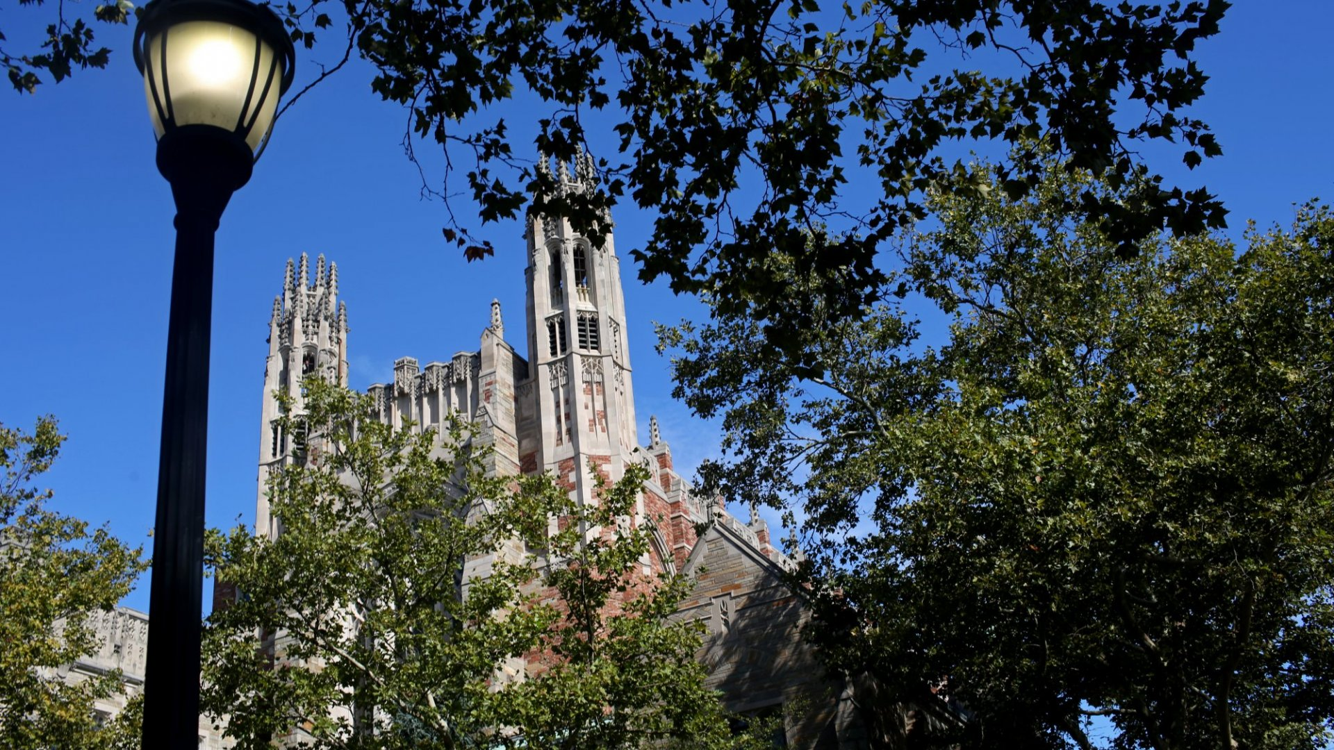Yale Lets Anyone Take Its Most Popular Class Ever for Free. 7 Things You'll Learn If You Do