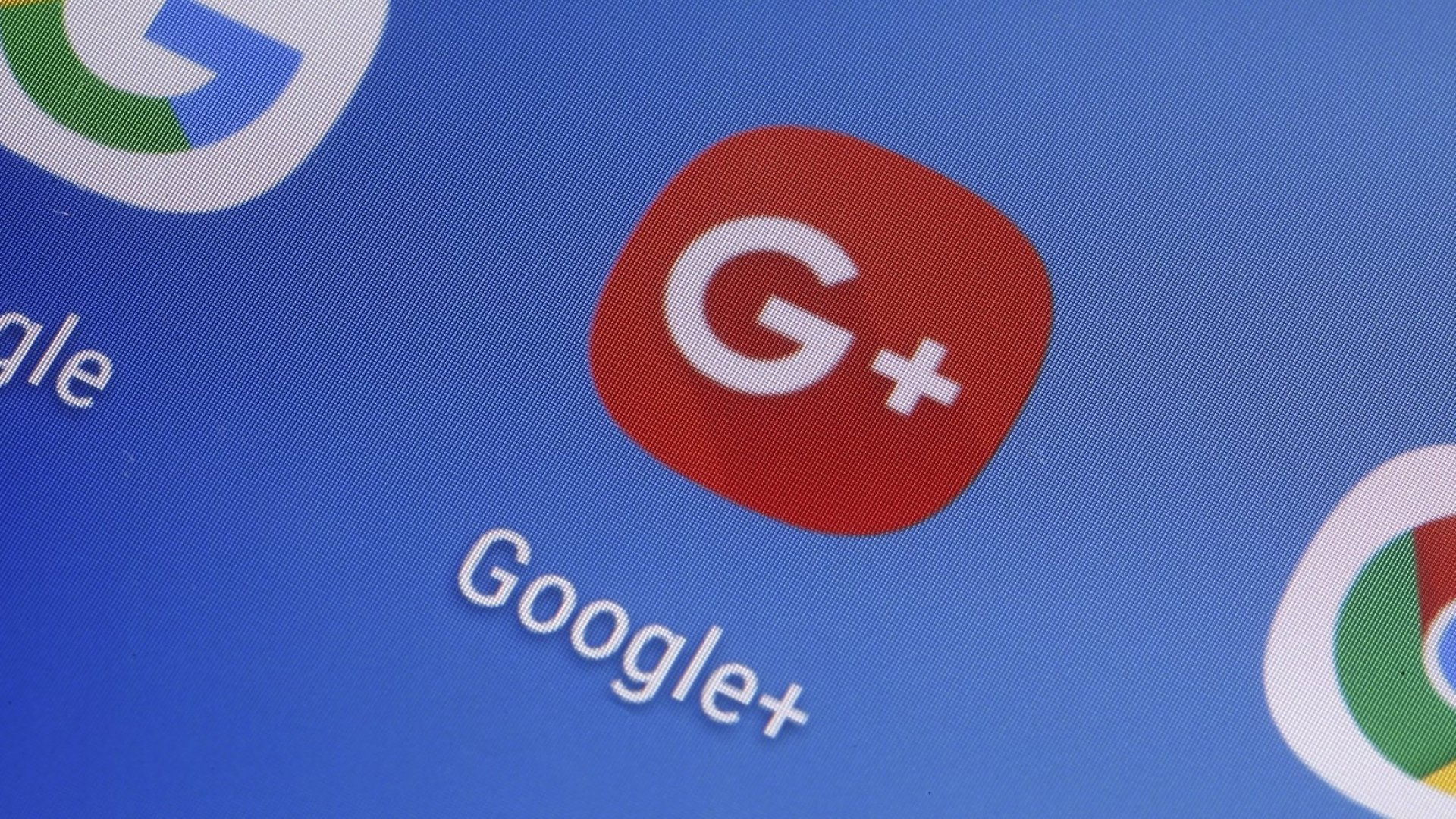 Google's Biggest Donkey Products in History
