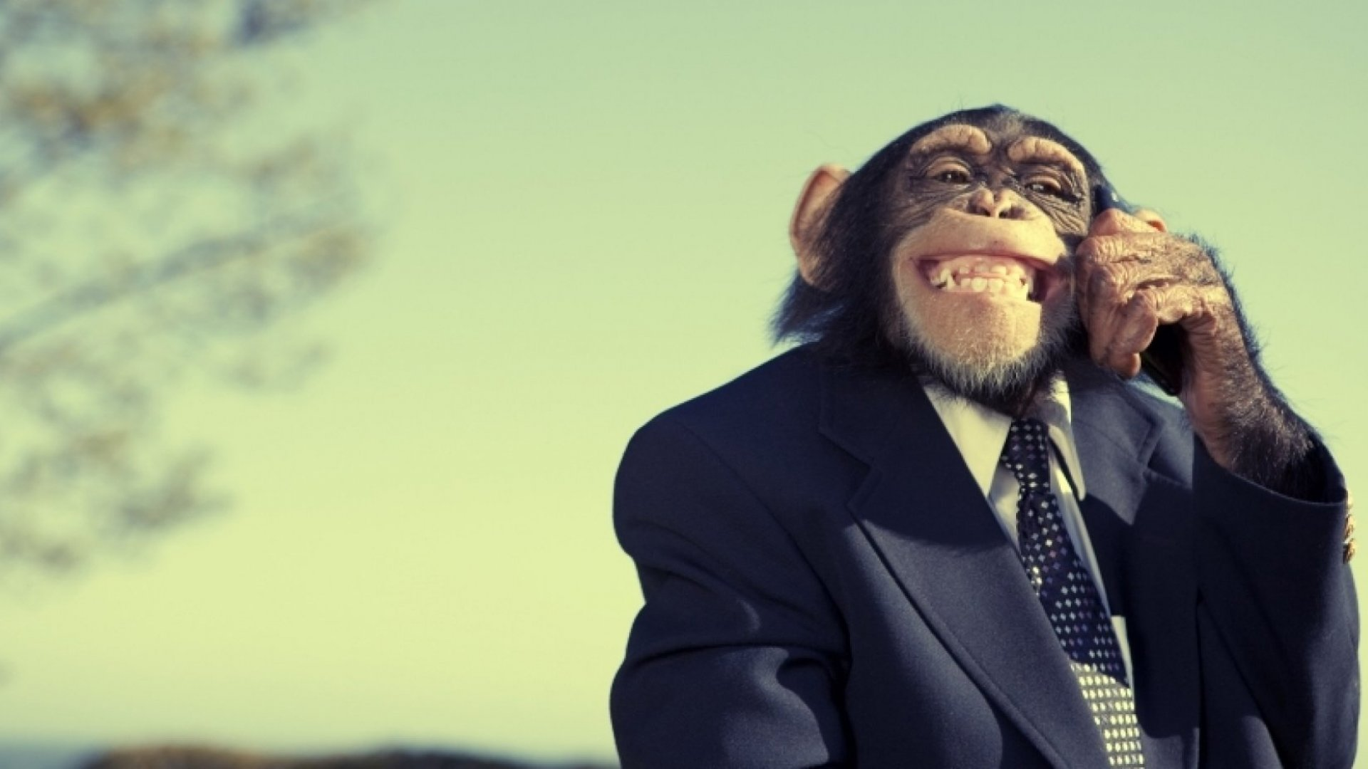 It's Official: Wearing a Suit Makes You Less Effective