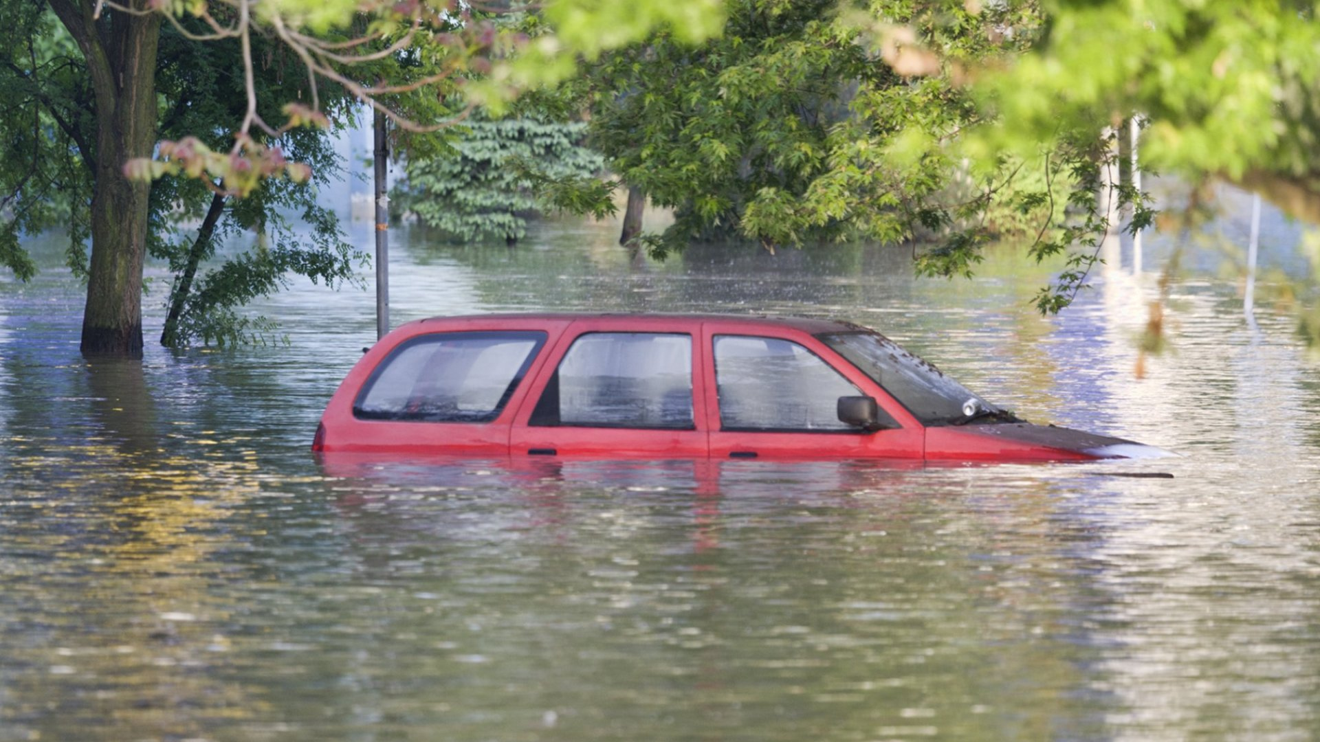 Flooded in Houston? Take These Steps to Access Tax and Financial Help