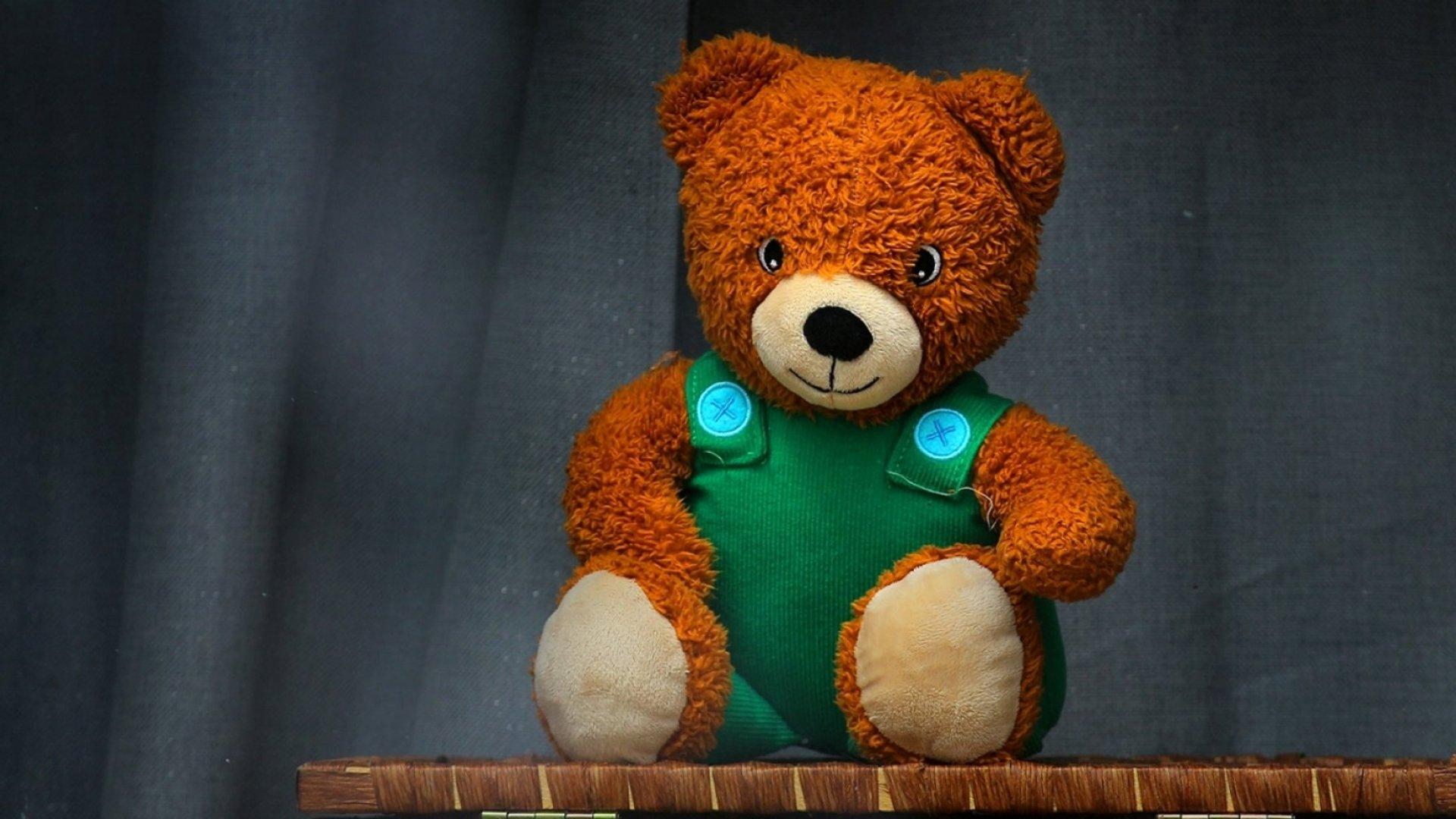 A teddy bear on display in a window in Boston.