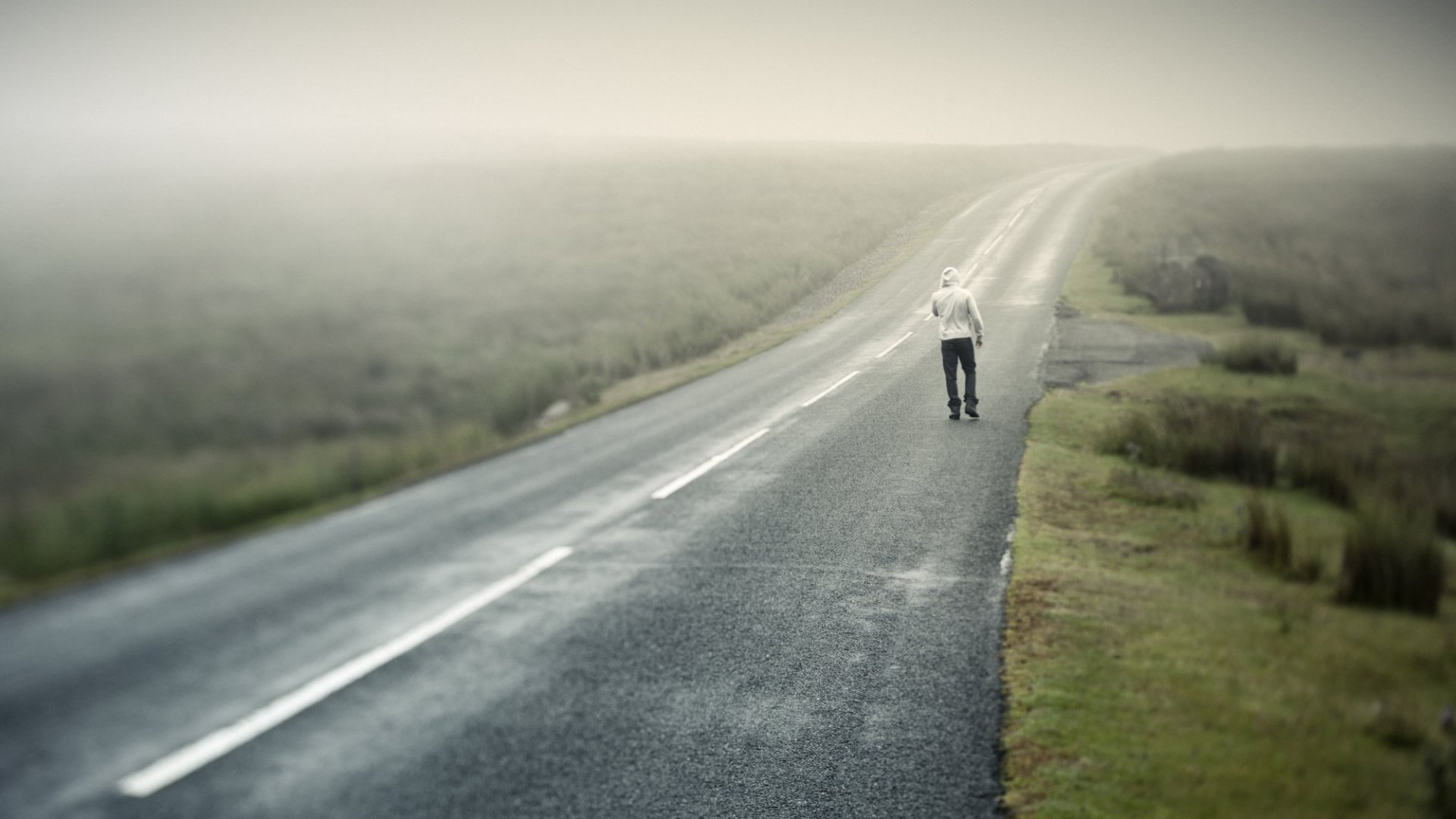What the Road From Failure to Success Looks Like