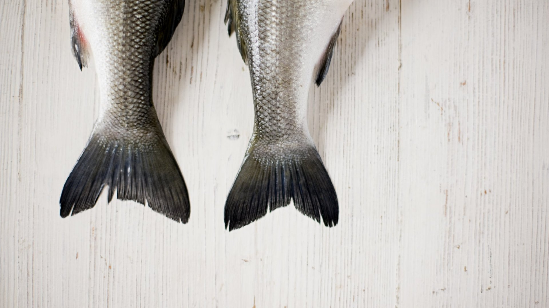 How Fishpeople is Making Seafood More Transparent