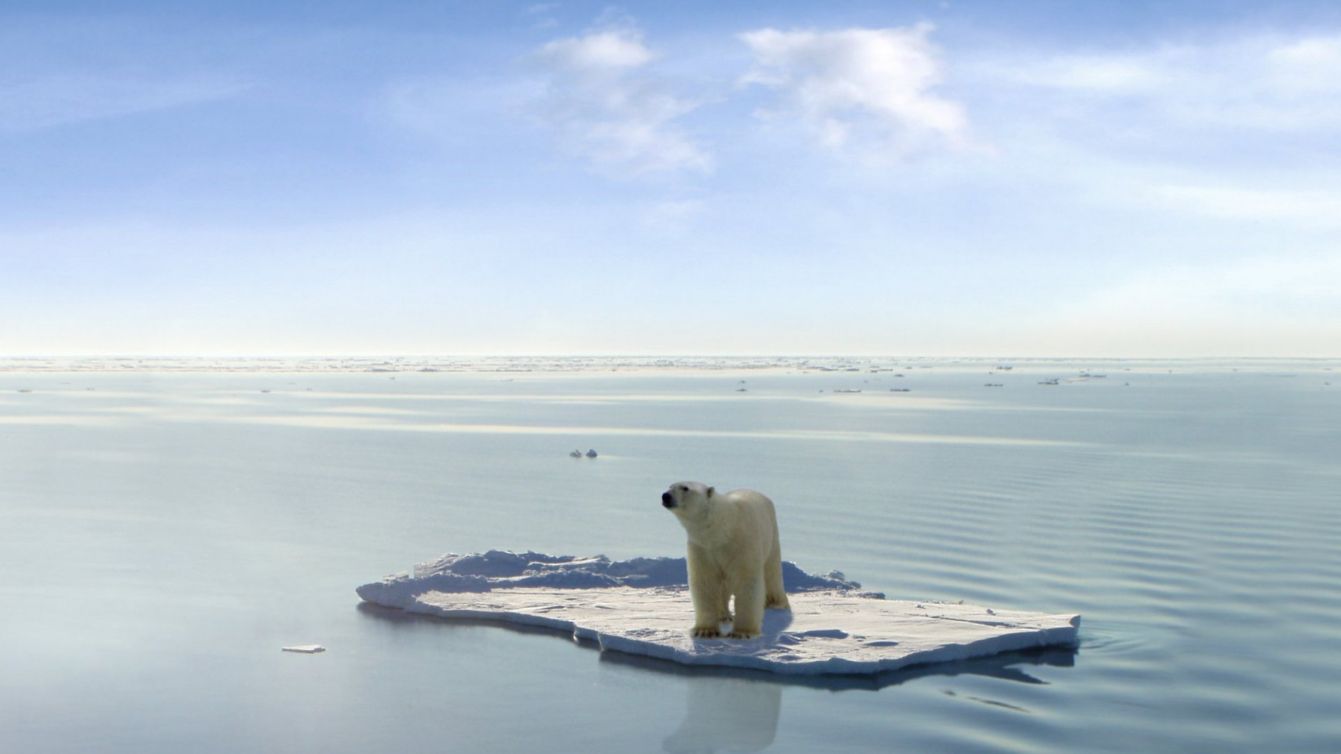 The Case for Curbing Global Warming