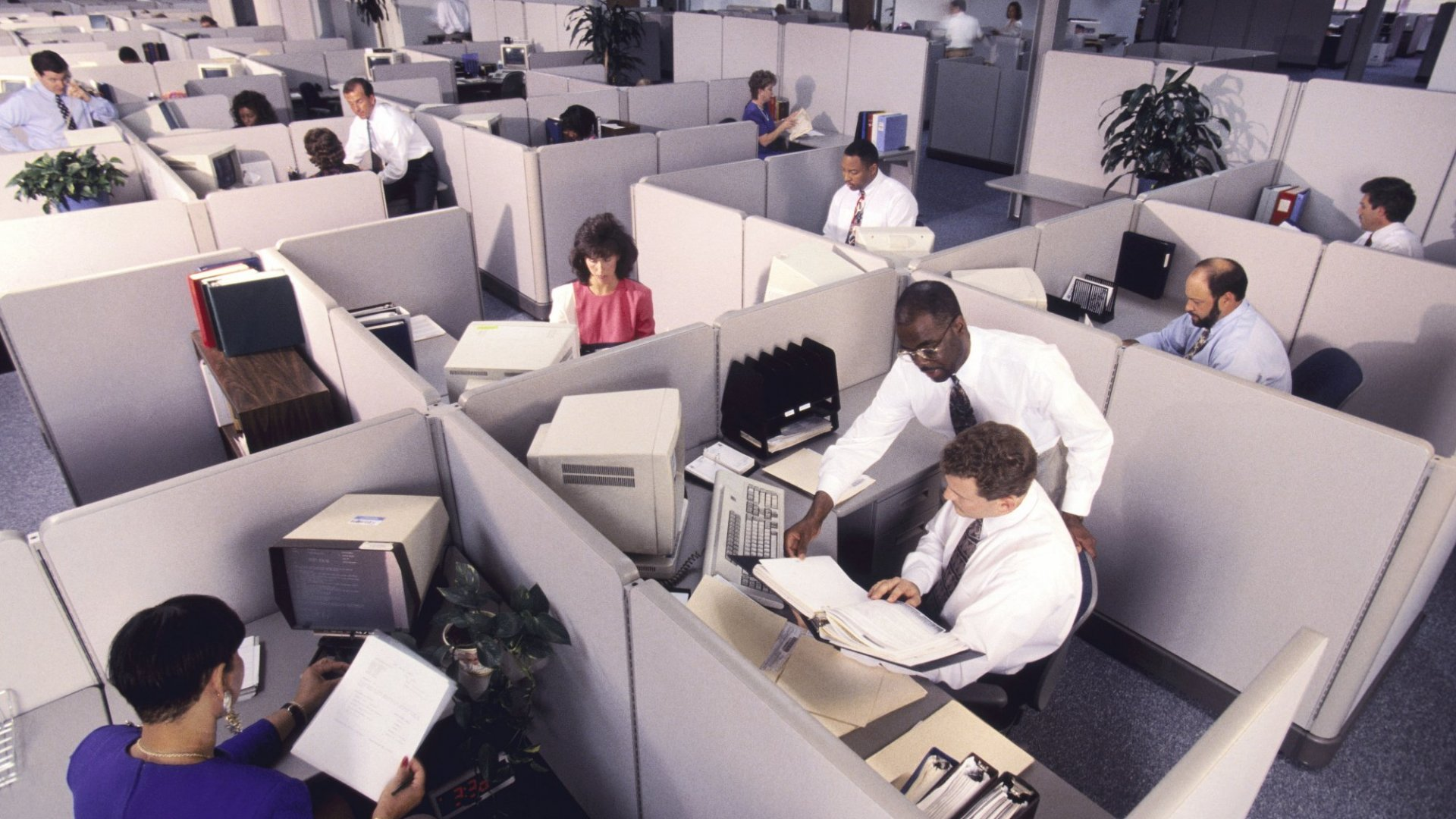 Here's How To Find Happiness While Working In A Cubicle All Day