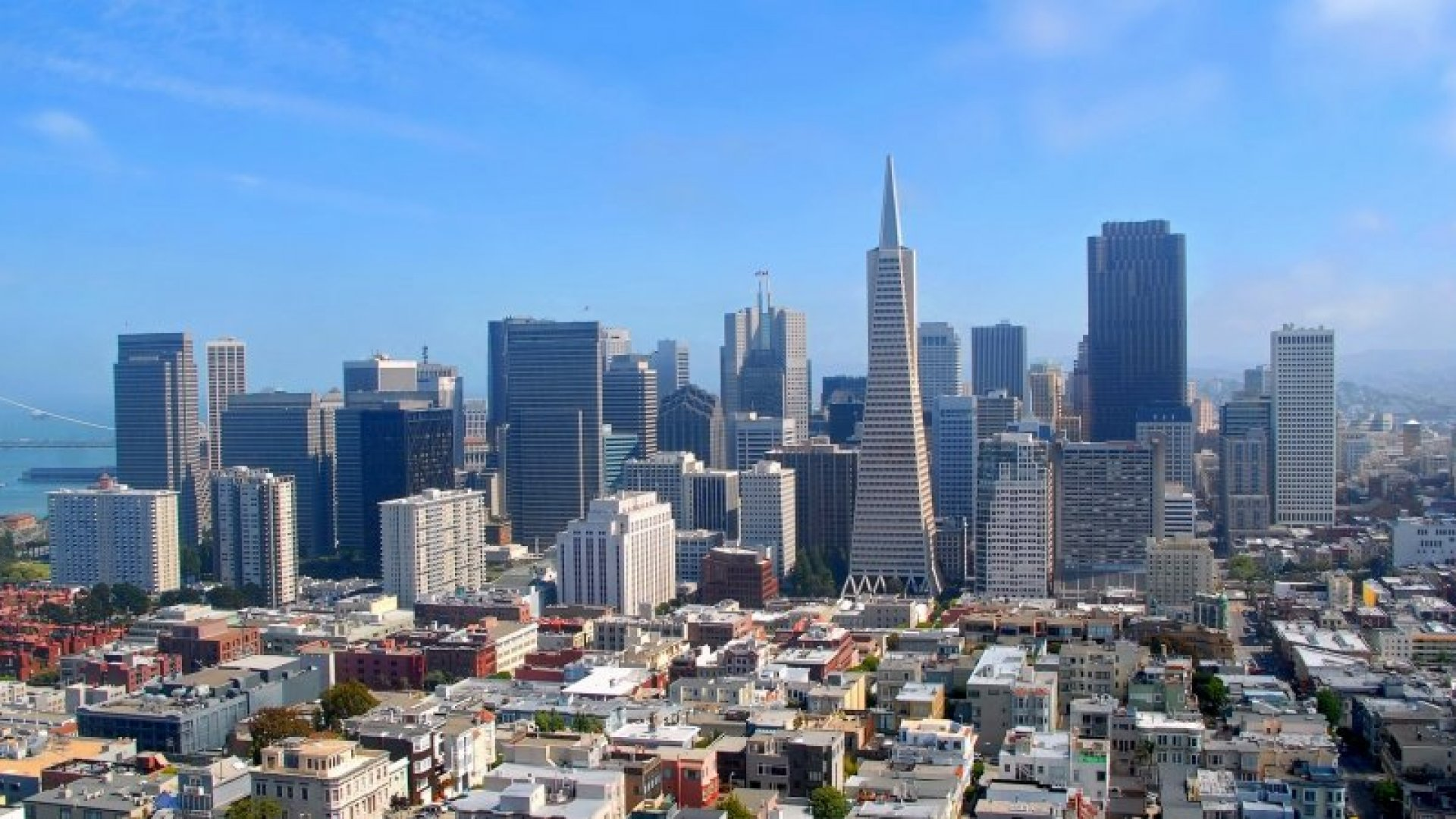 5 San Francisco Companies Disrupting Entire Industries
