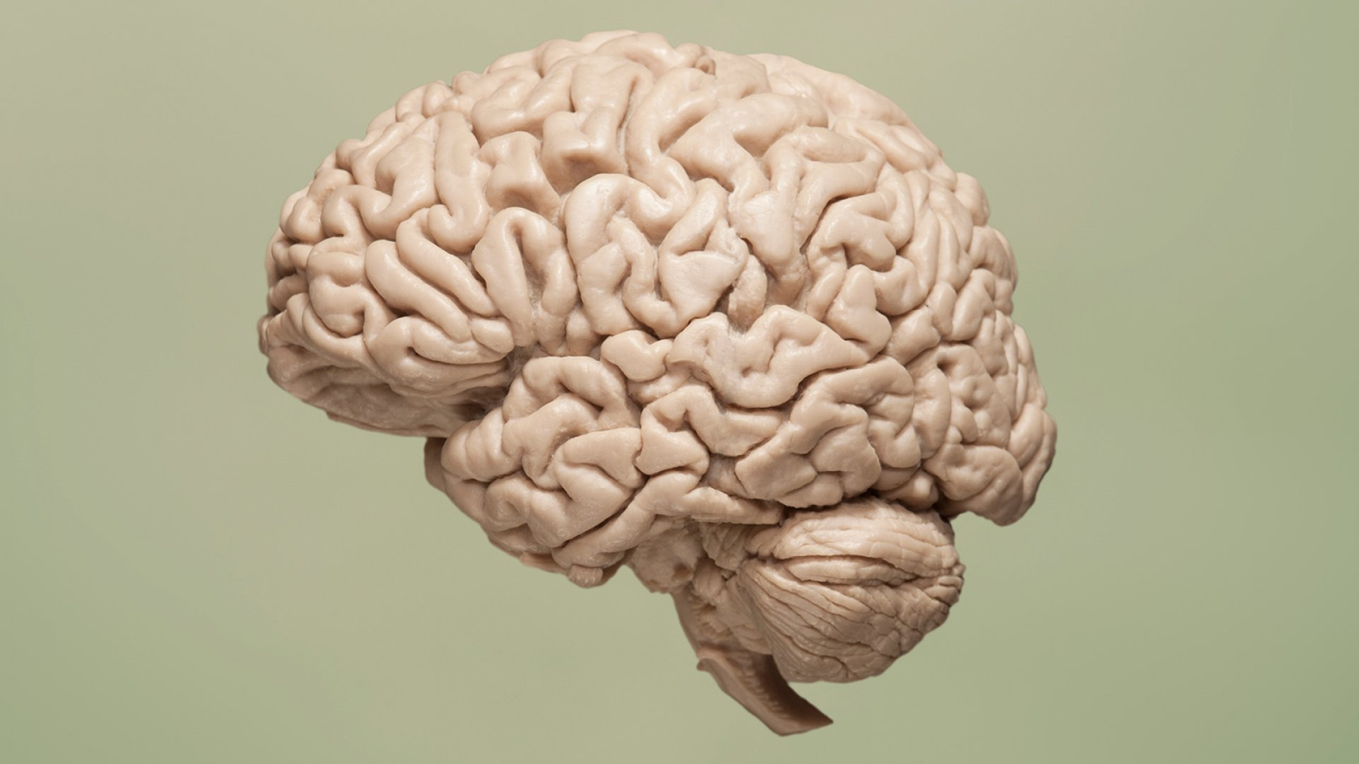 How a Brain Scientist Stays Mentally Fit (It's Incredibly Simple)