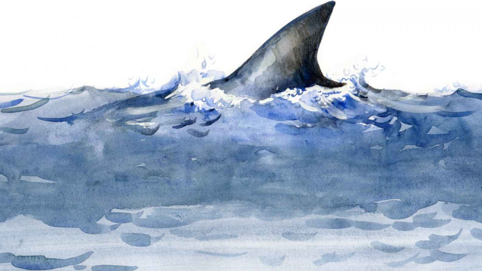 Should Your Business Really Compete on 'Shark Tank'?