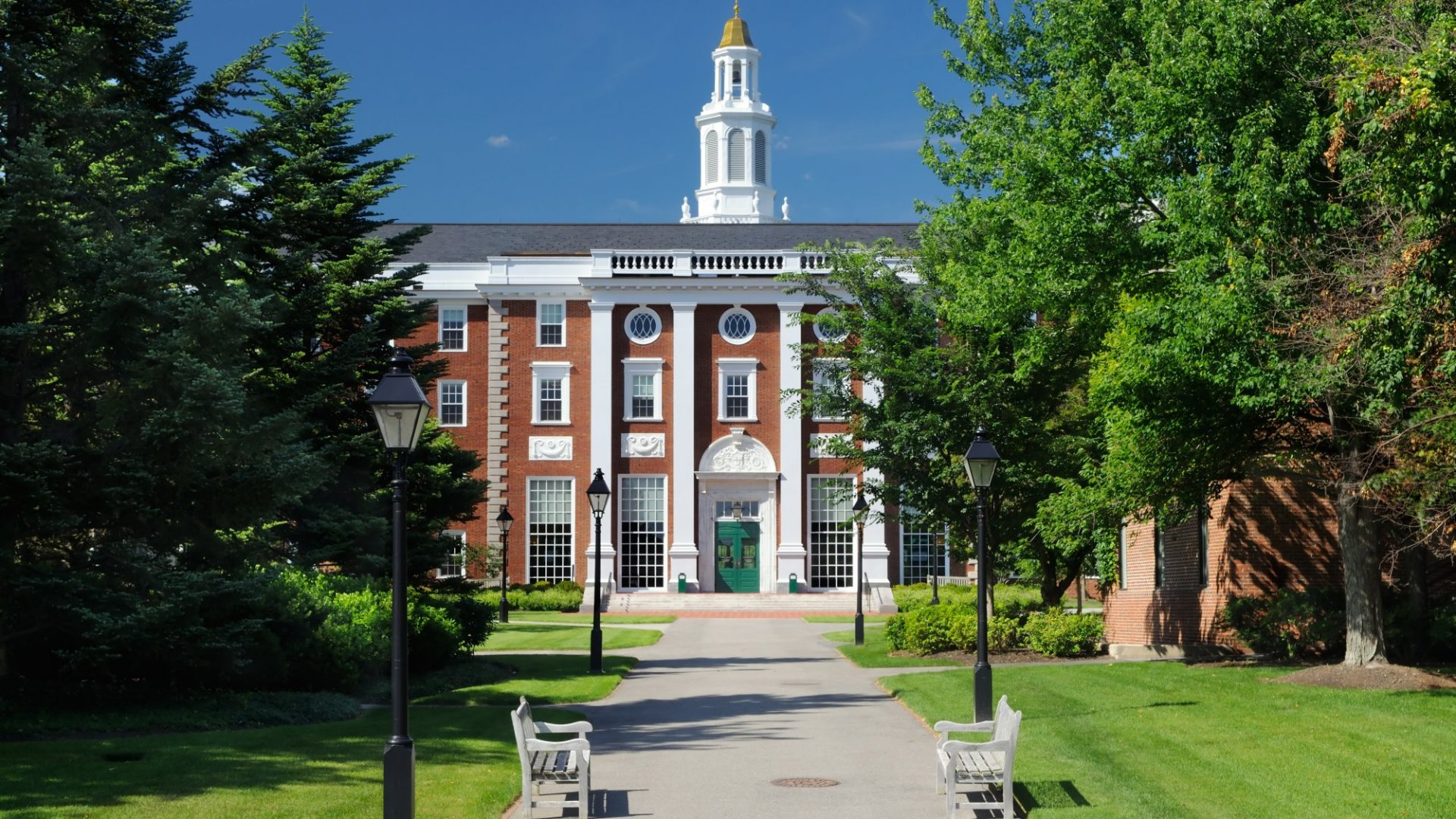 You Don't Need a Degree From One of These Schools to Become a Startup CEO--but It Sure Helps