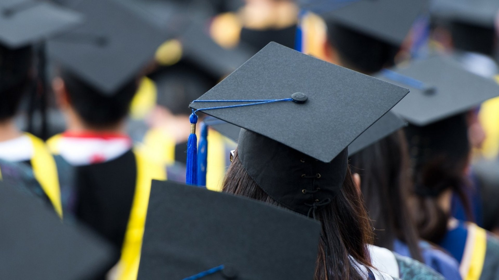 New Government Website Shows Exactly How Much College Graduates Can Expect to Earn